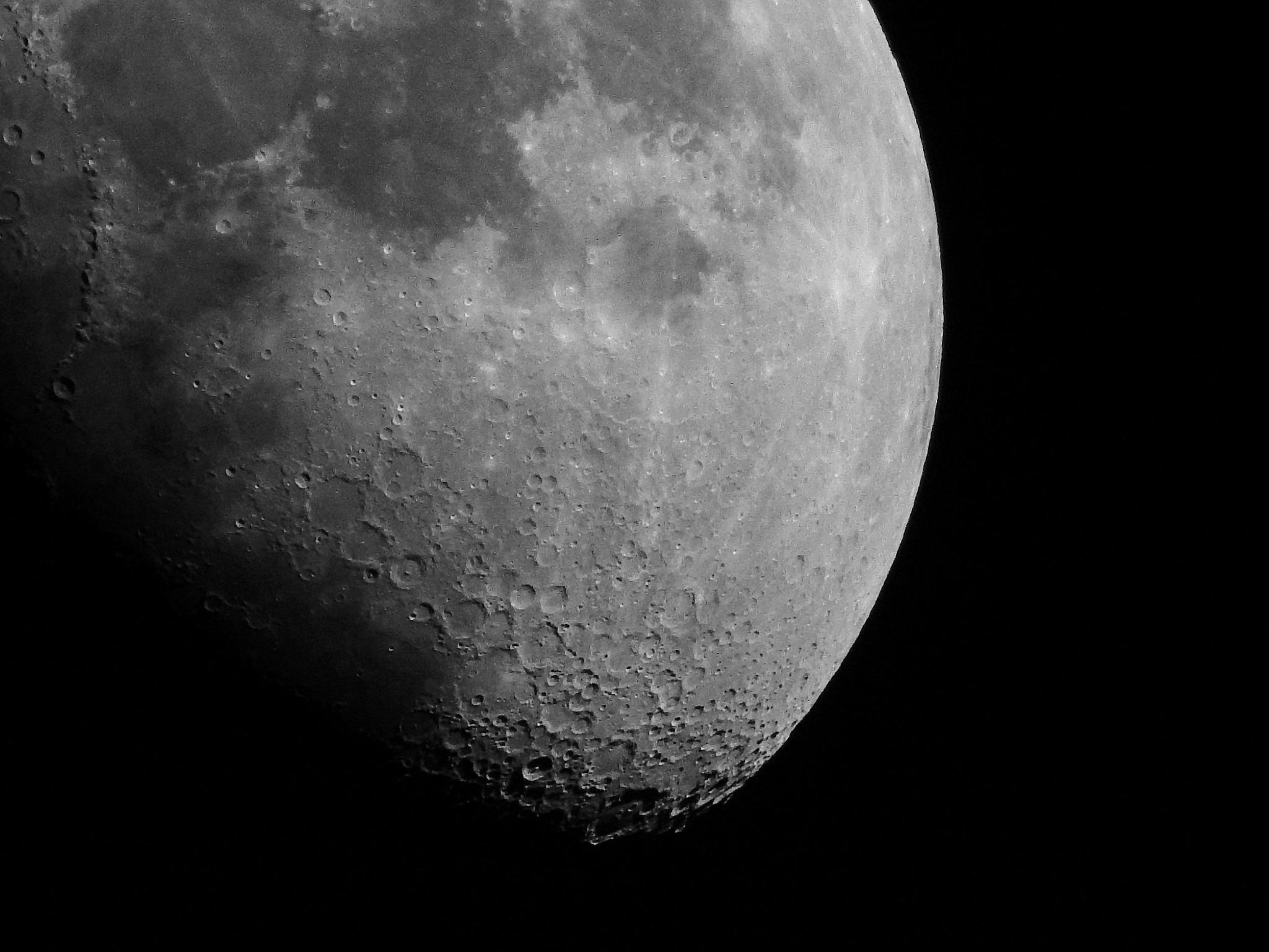 Look toward the Moon by Egon Cokan