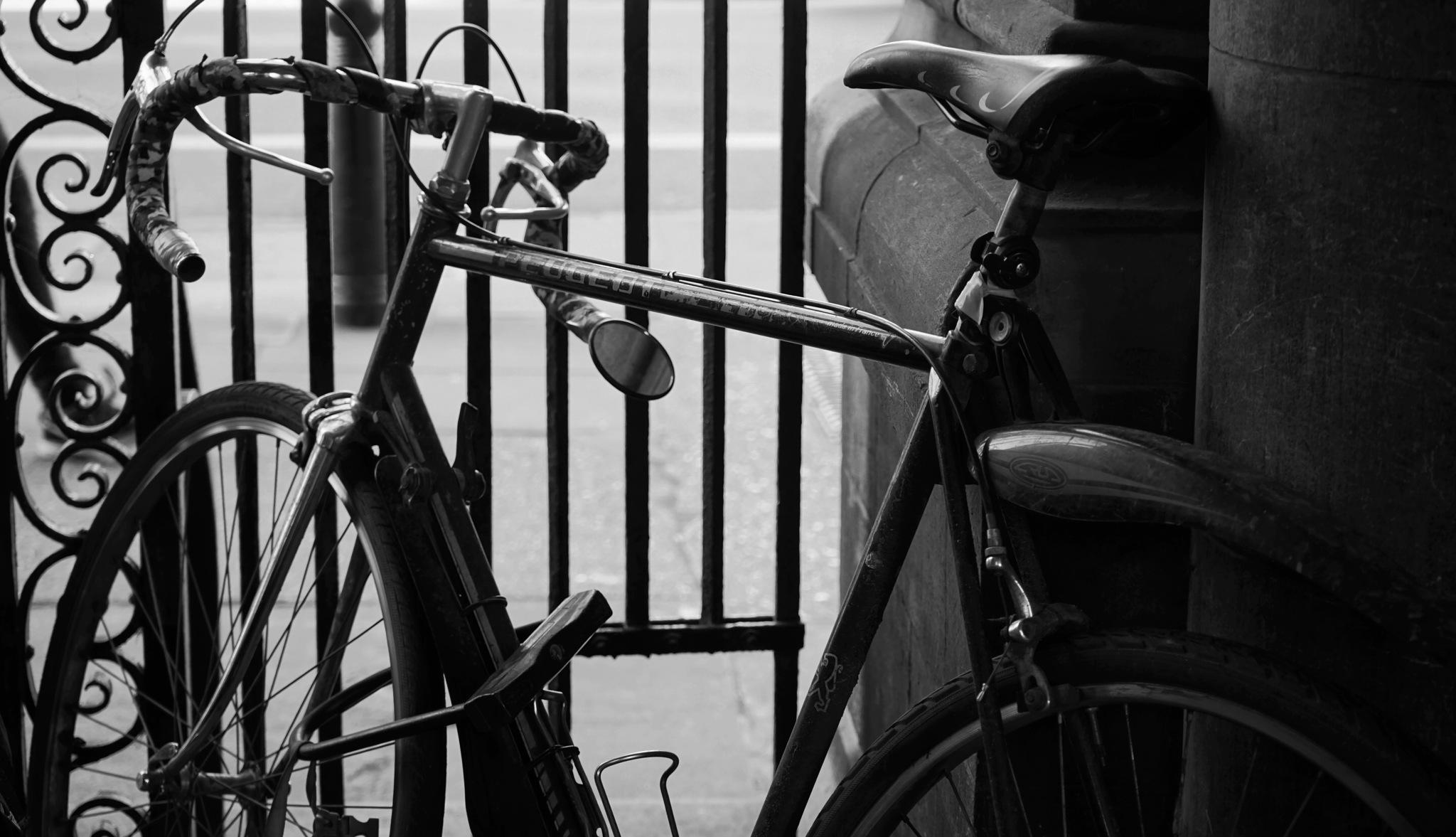 A  Cambridge Bike Photo... by Adueni