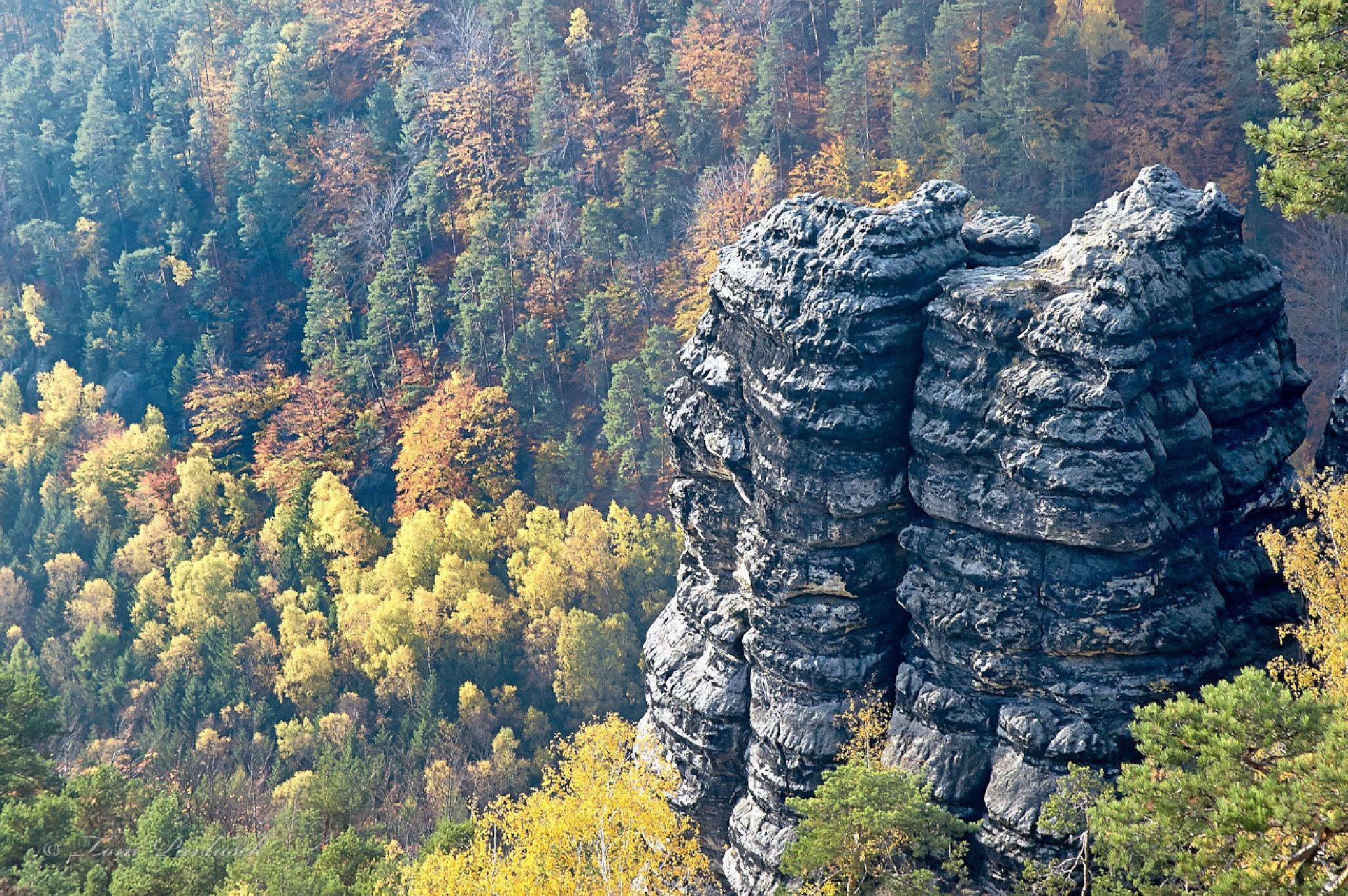Autumn in the sandstone rocks by tompavlas