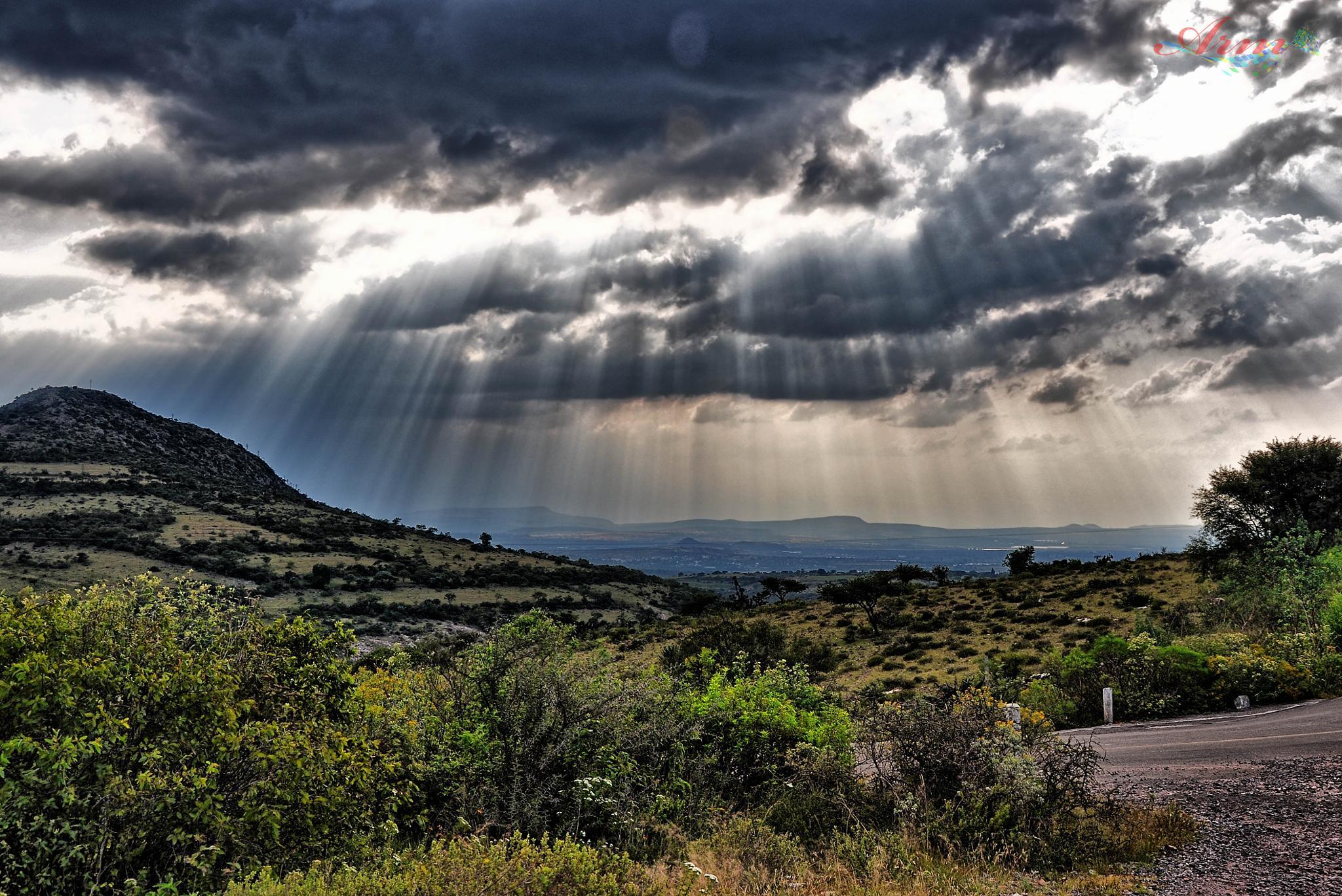 Let it be light  by villaprogreso