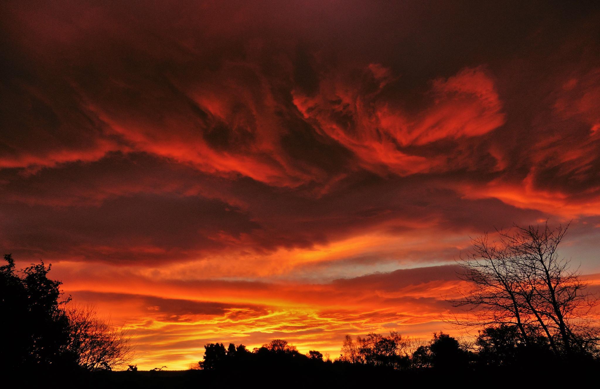 Scottish Sunrise. by Lisa Wood