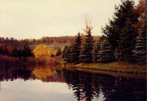 Country Reflections by Countryboy