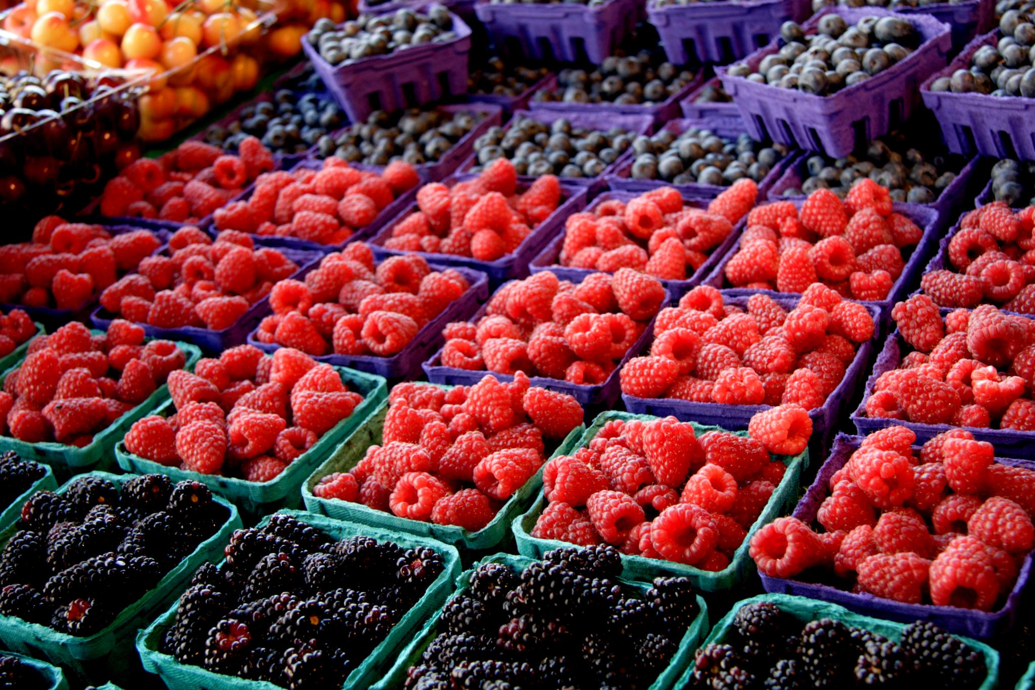 Fresh Berries by David Foster