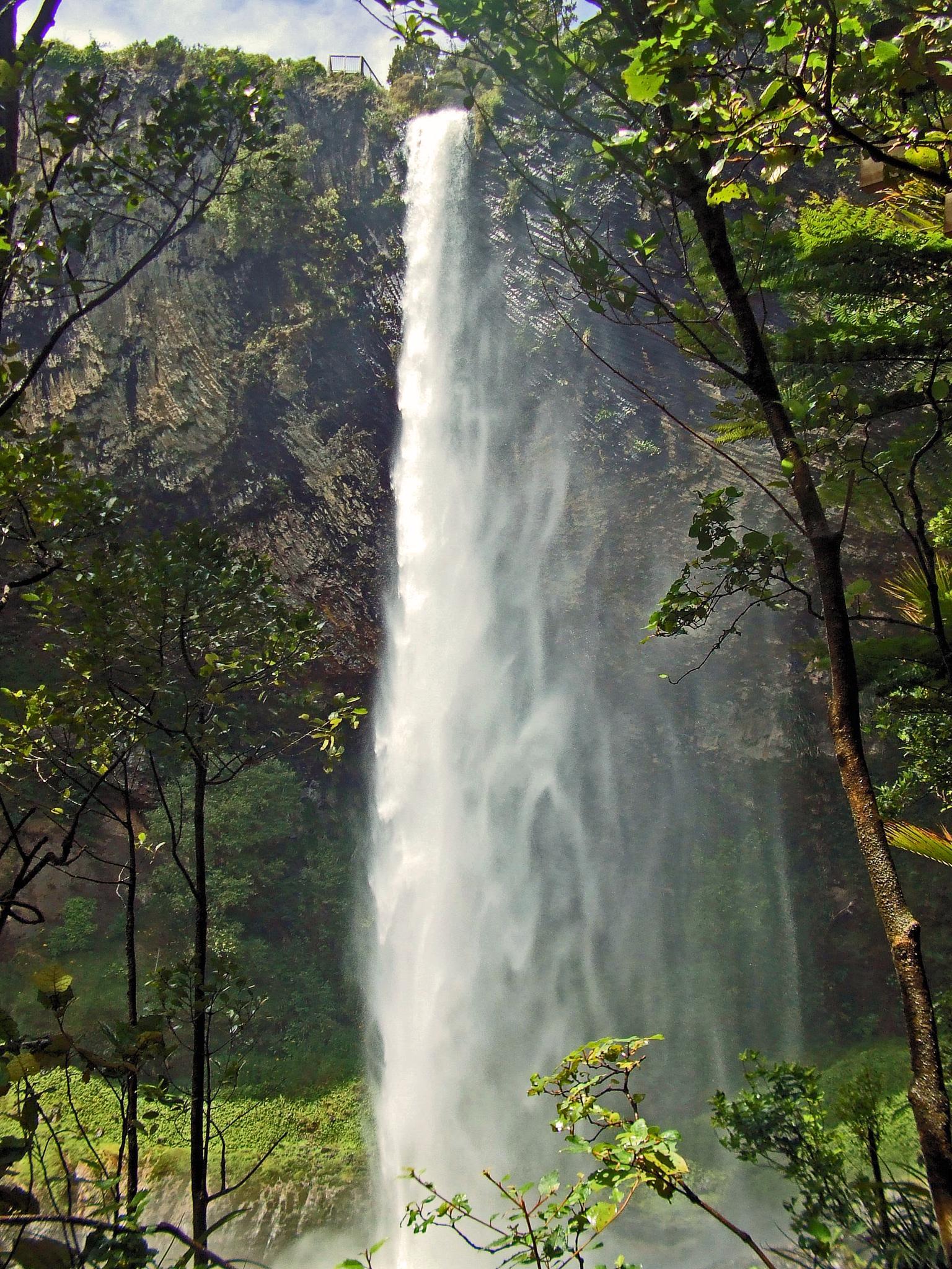 North Island Waterfall by kelrey31