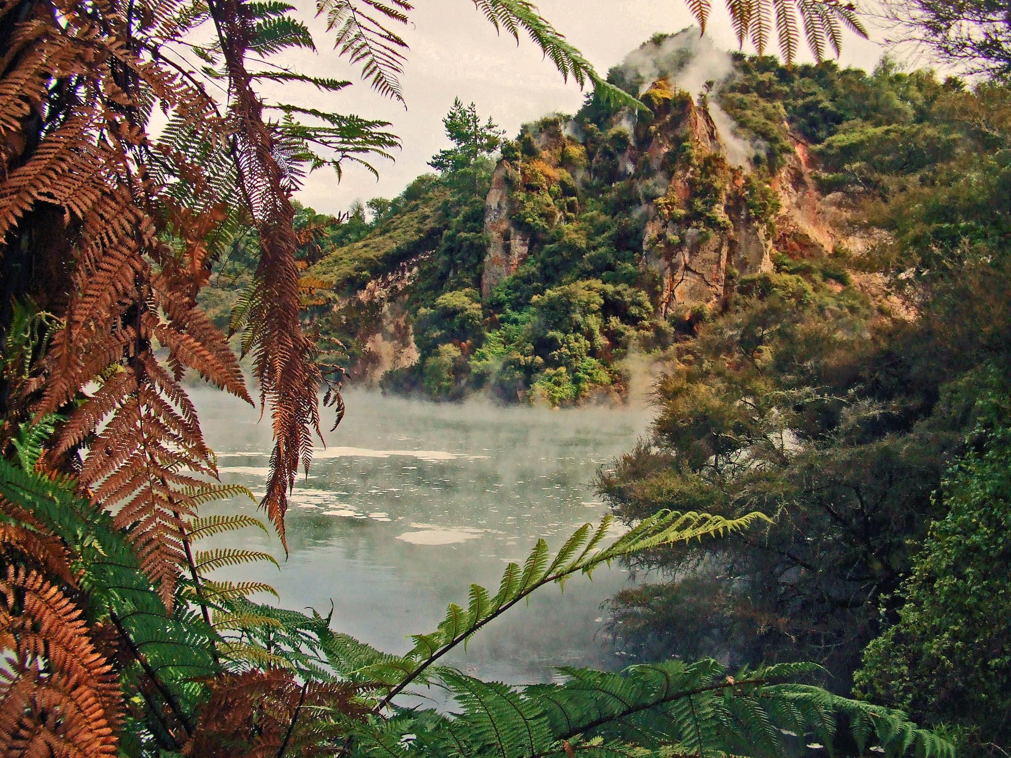 Rotorua hot springs by kelrey31