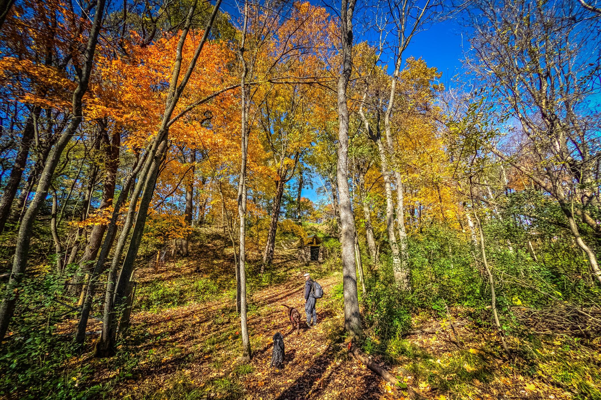 Charles Lindberg State Park by kelrey31