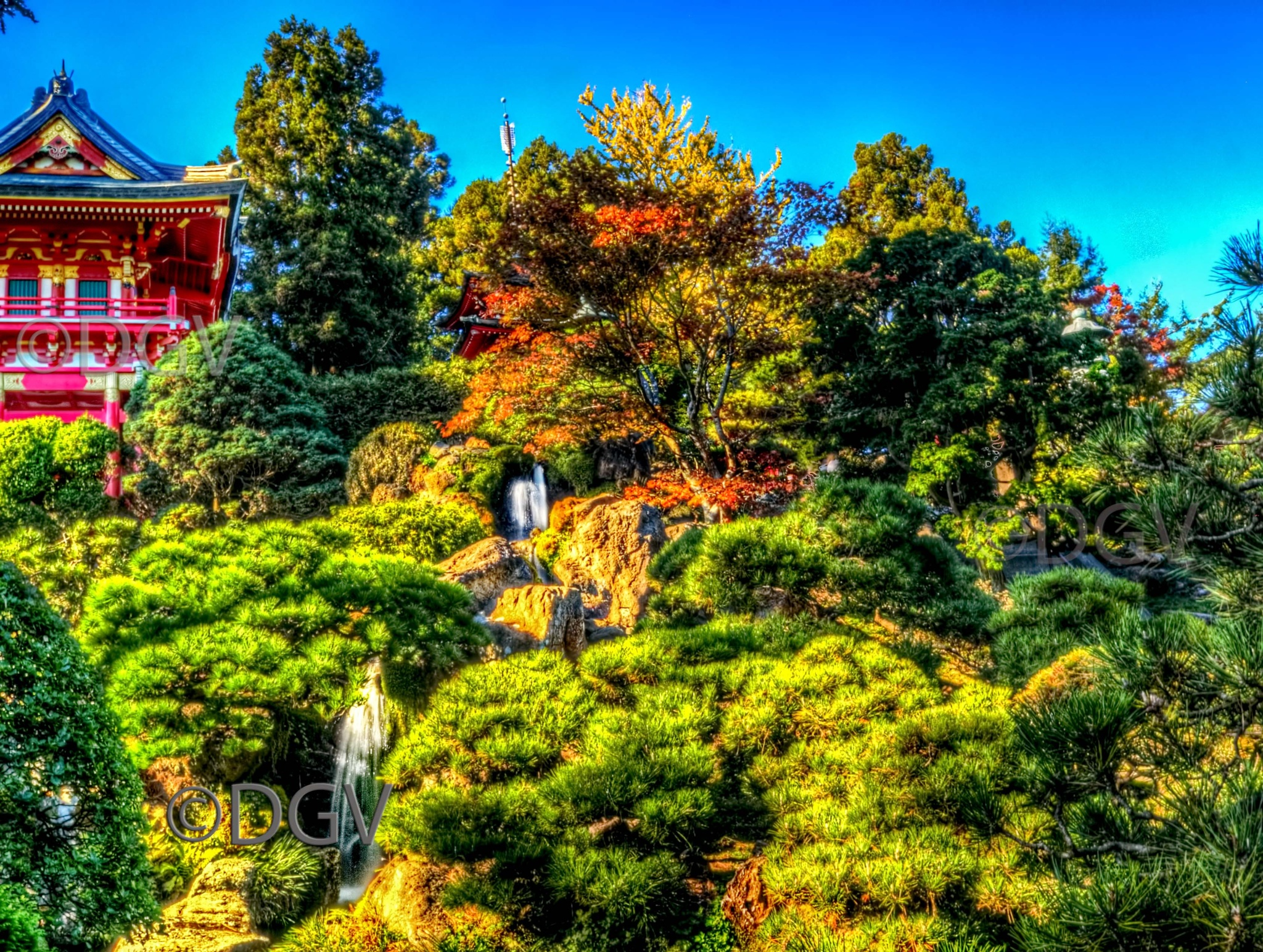 Pagoda,Trees & Water by dgvarch