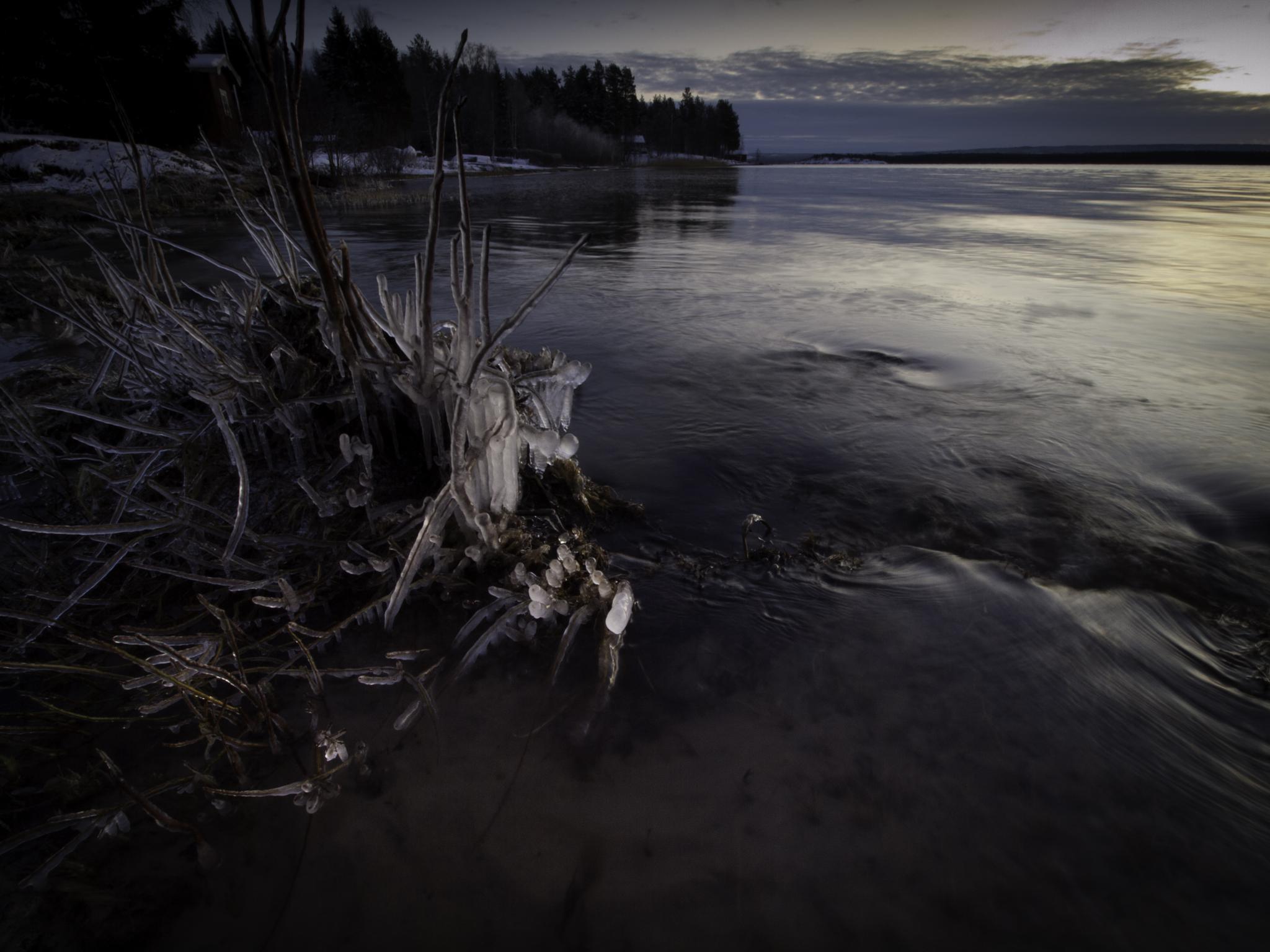 Shore by olof.rosenius