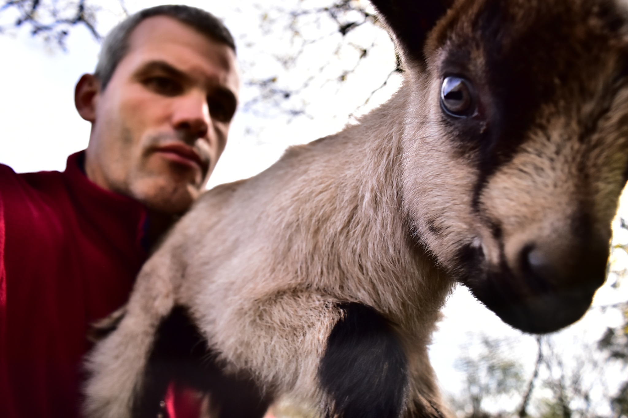 Baby goat & Me by Marc Leroy