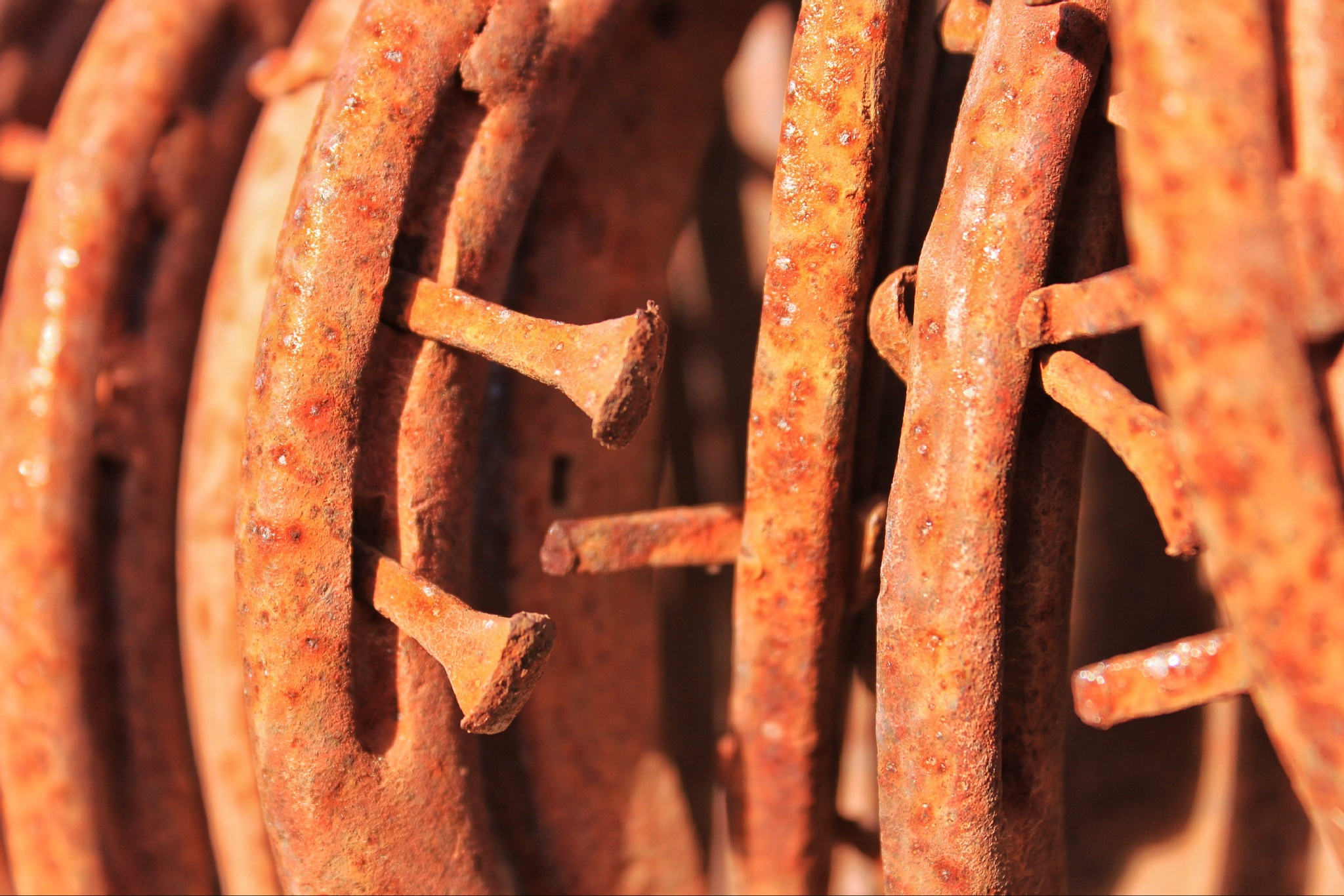 Old Horseshoes and Nails by shaunarwhitaker