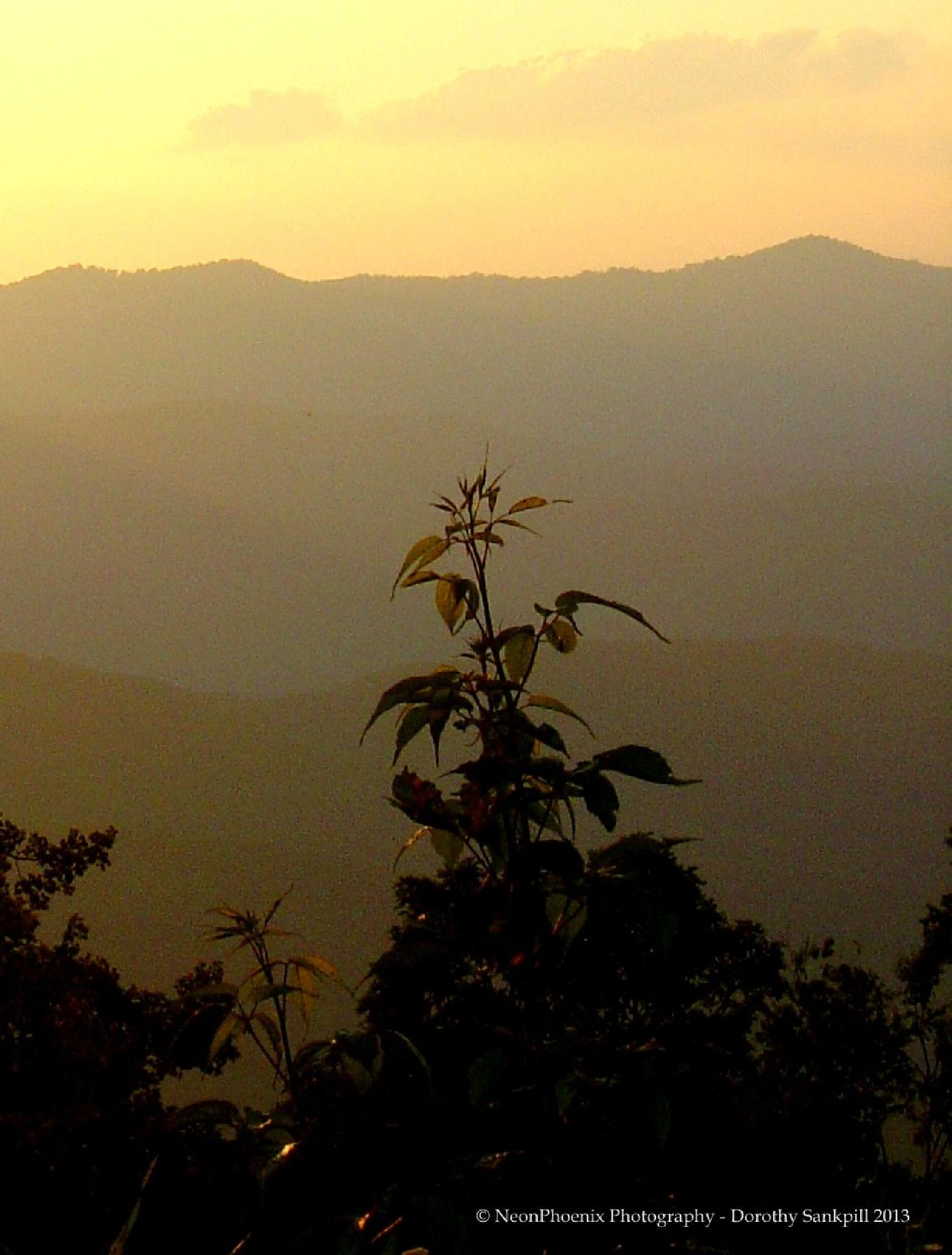 Blue Ridge Sunset by NeonPhoenix