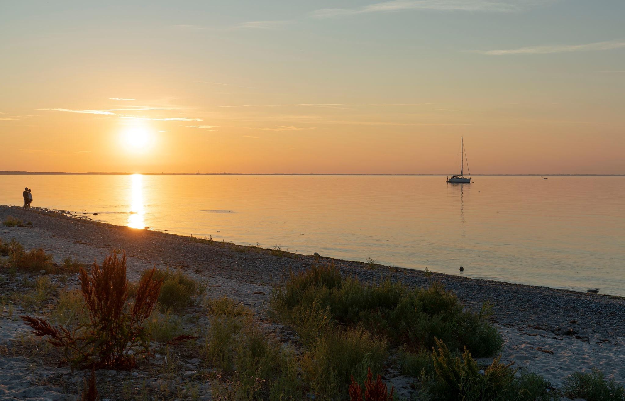 Summer evening by Dorte Hedengran