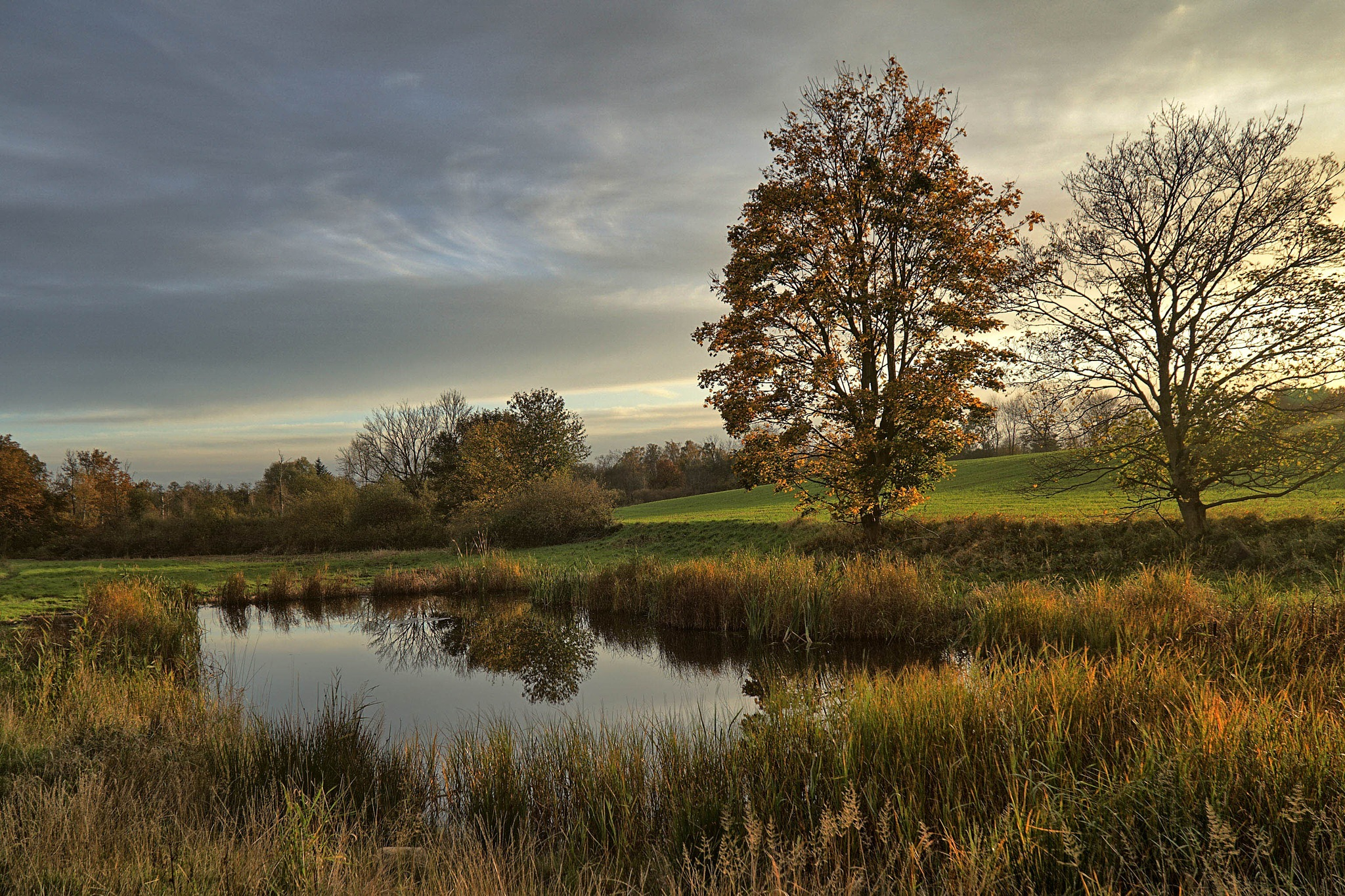 Lake in the fall afternoon sun by Dorte Hedengran