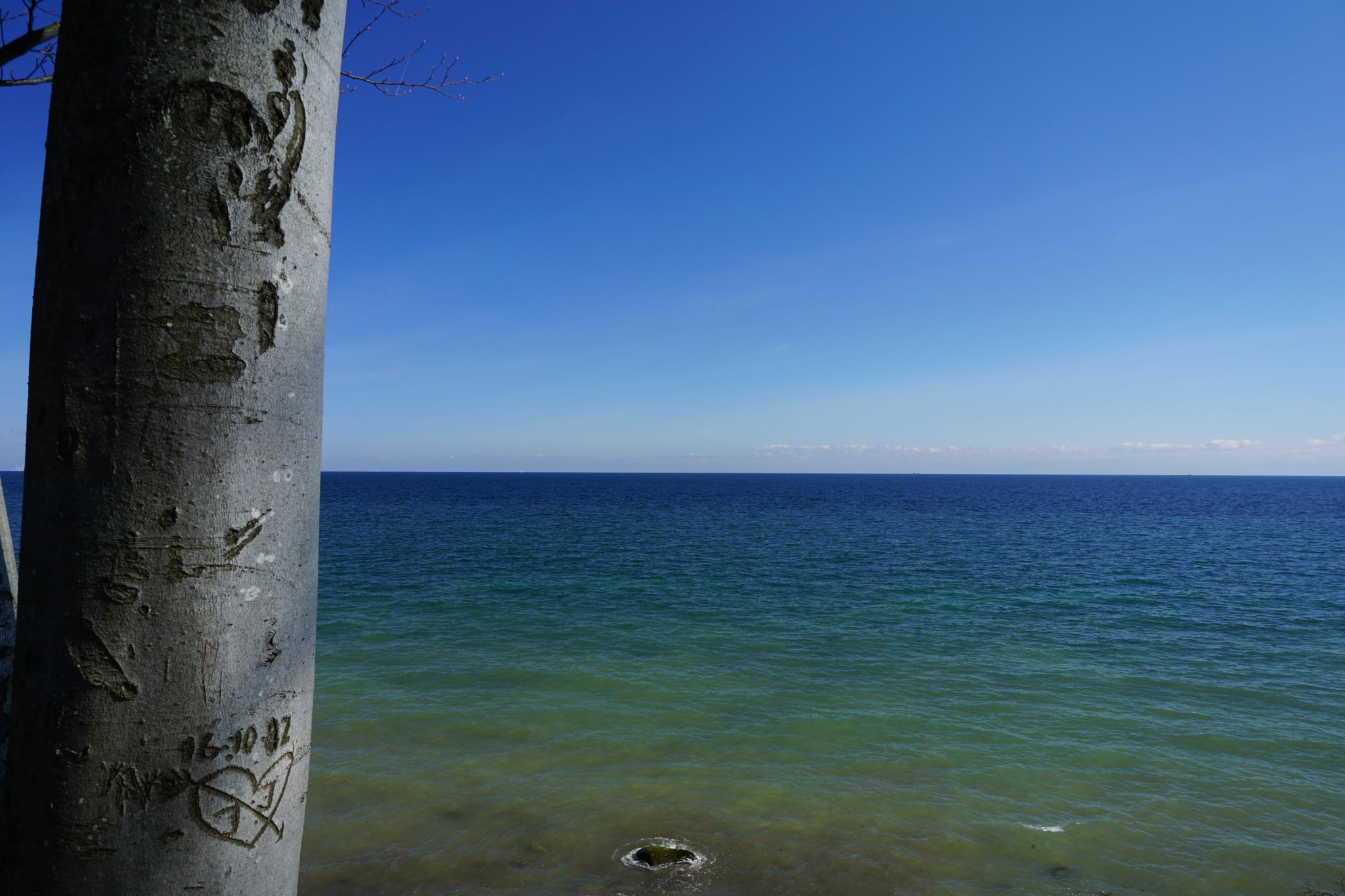 View over the sea by Dorte Hedengran