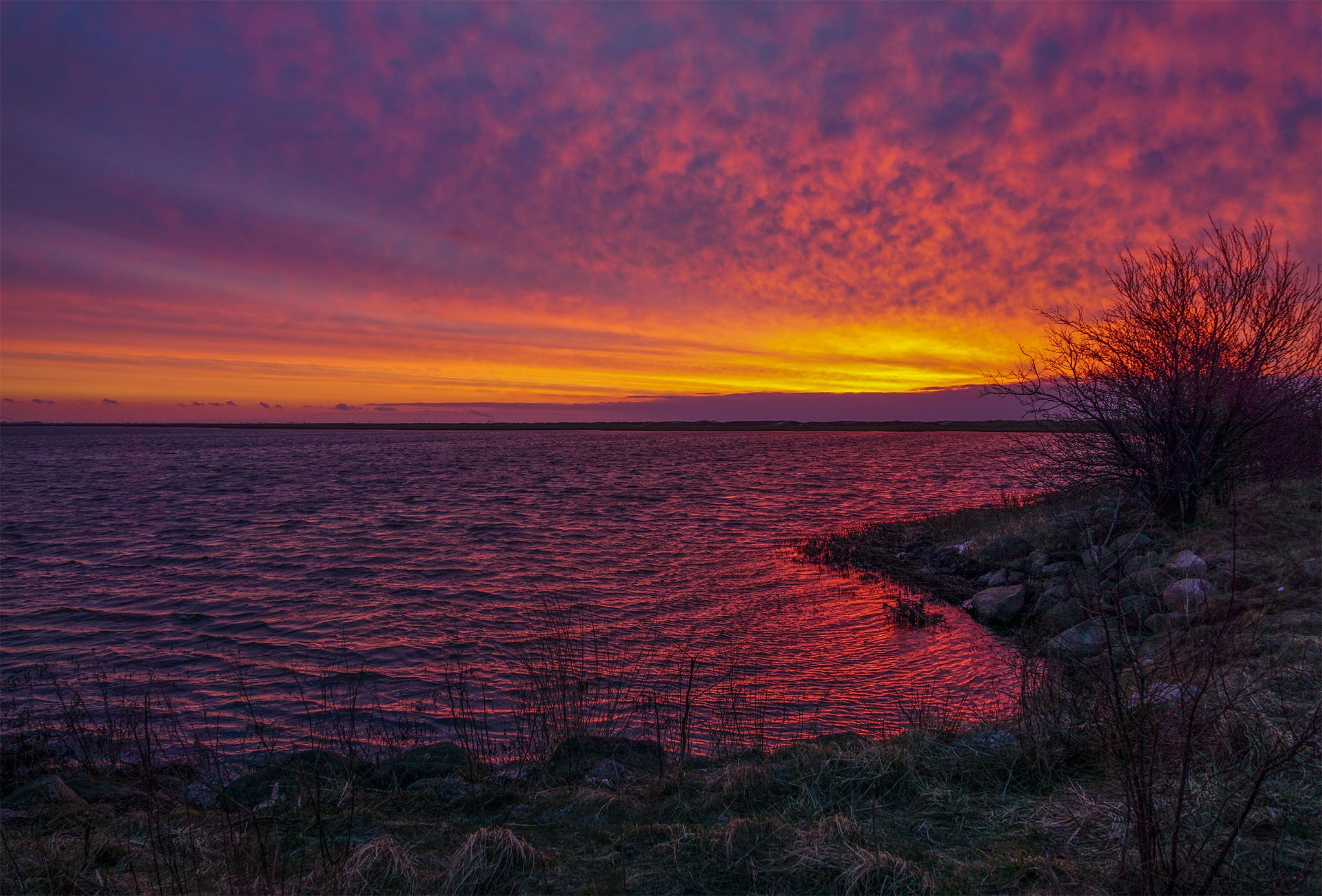 Red sky by Dorte Hedengran