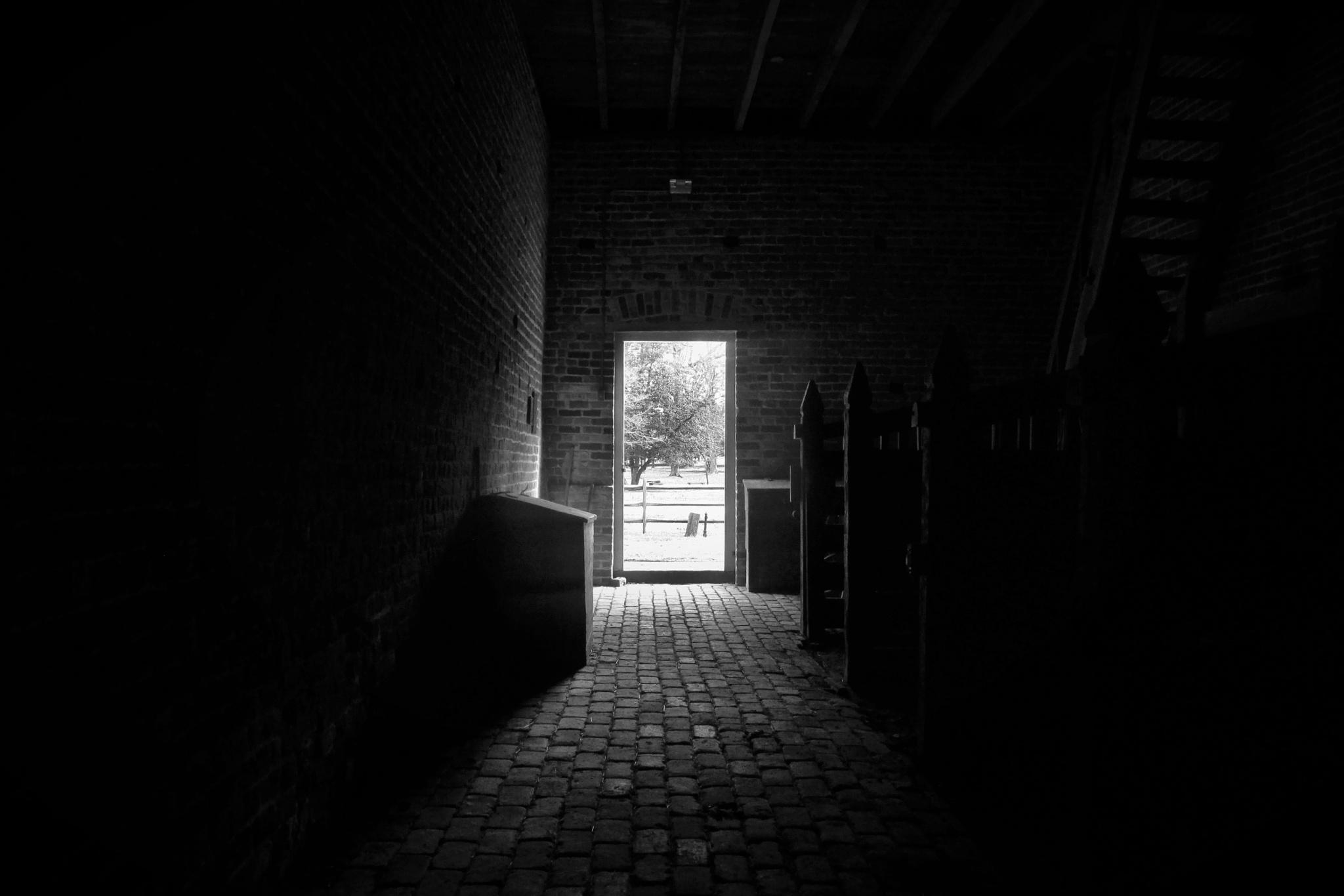 Alone In The Dark by brant.stevenson