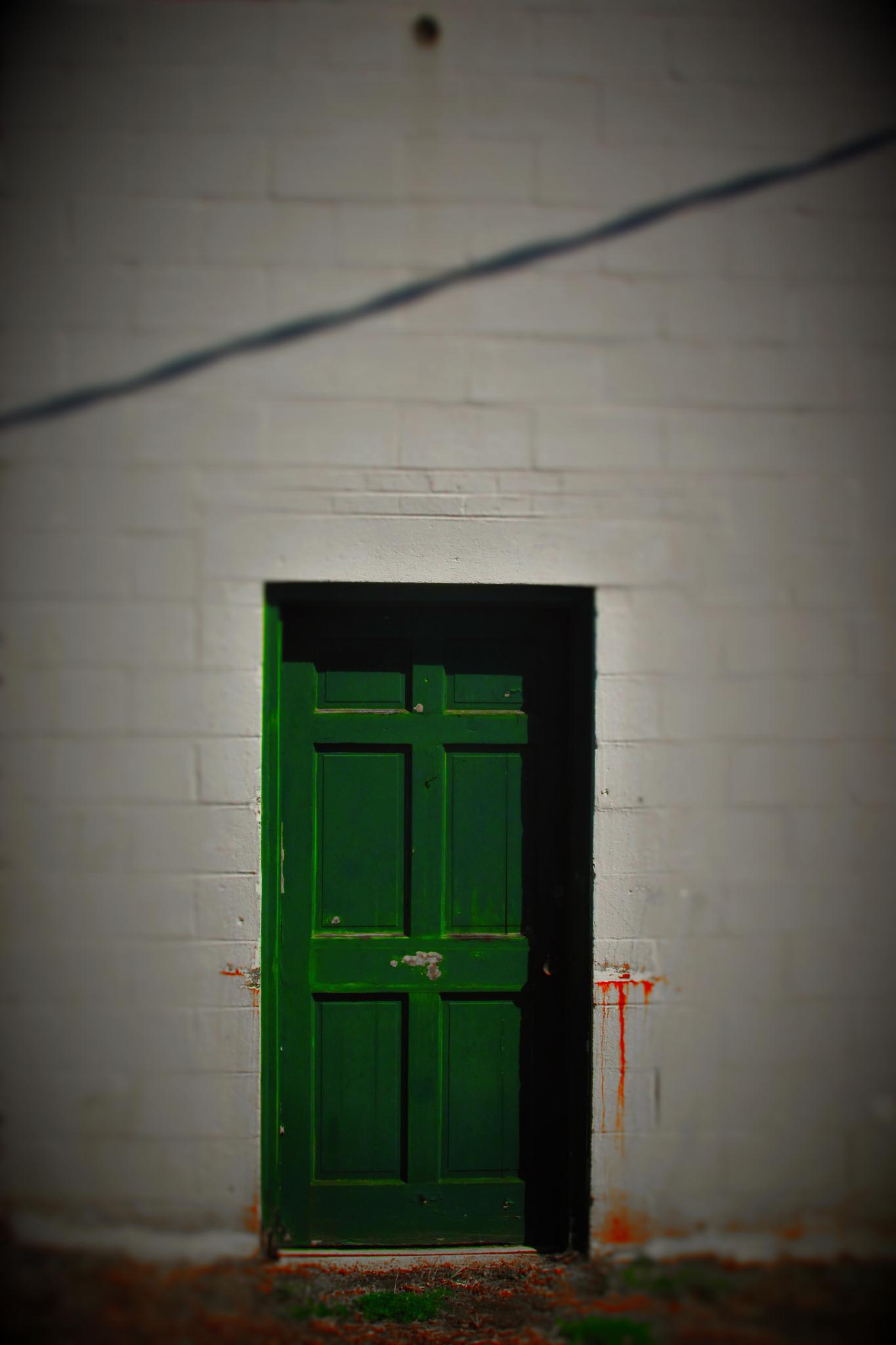 The Green Door by brant.stevenson