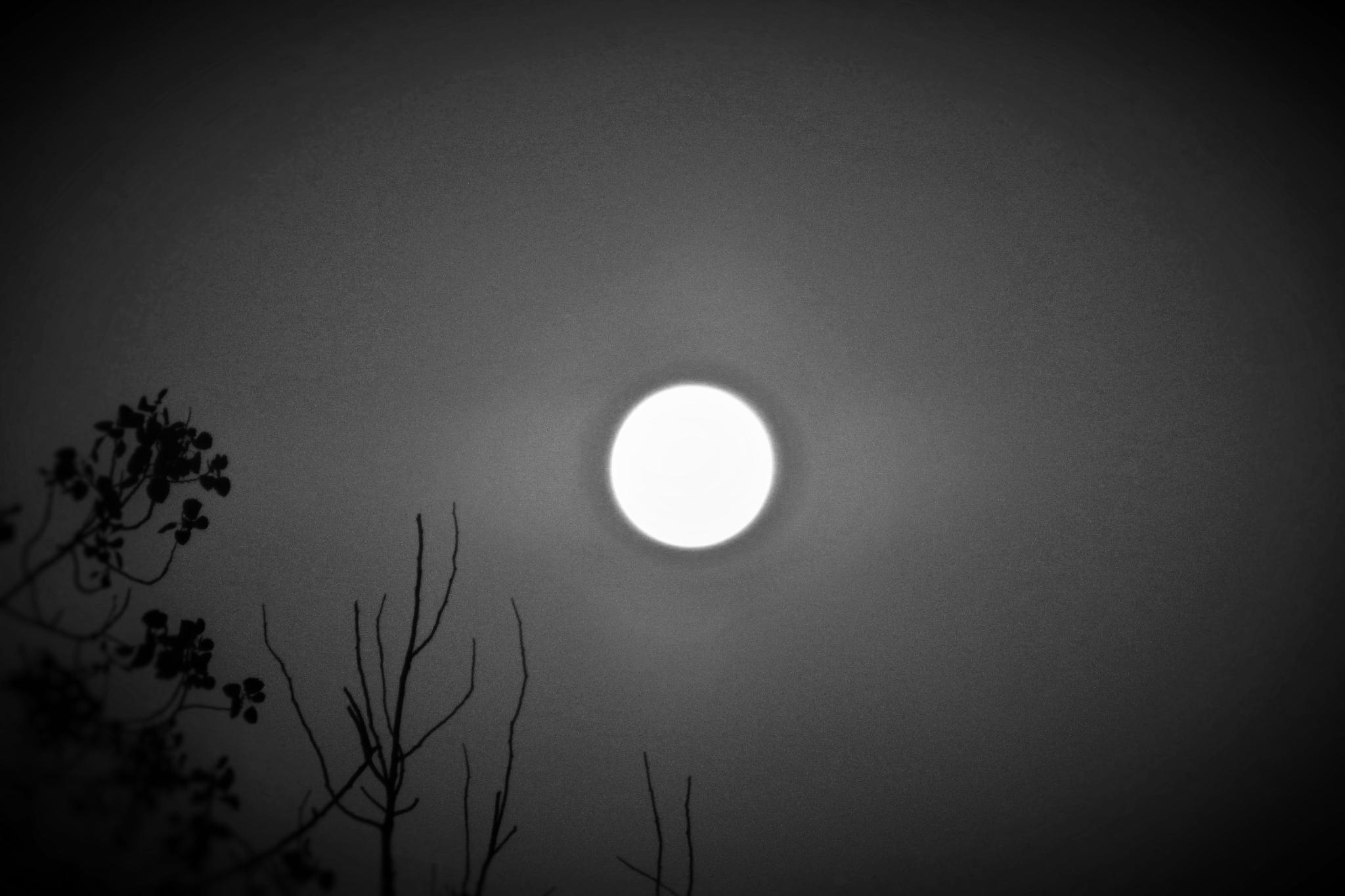 Dark O'Clock by brant.stevenson