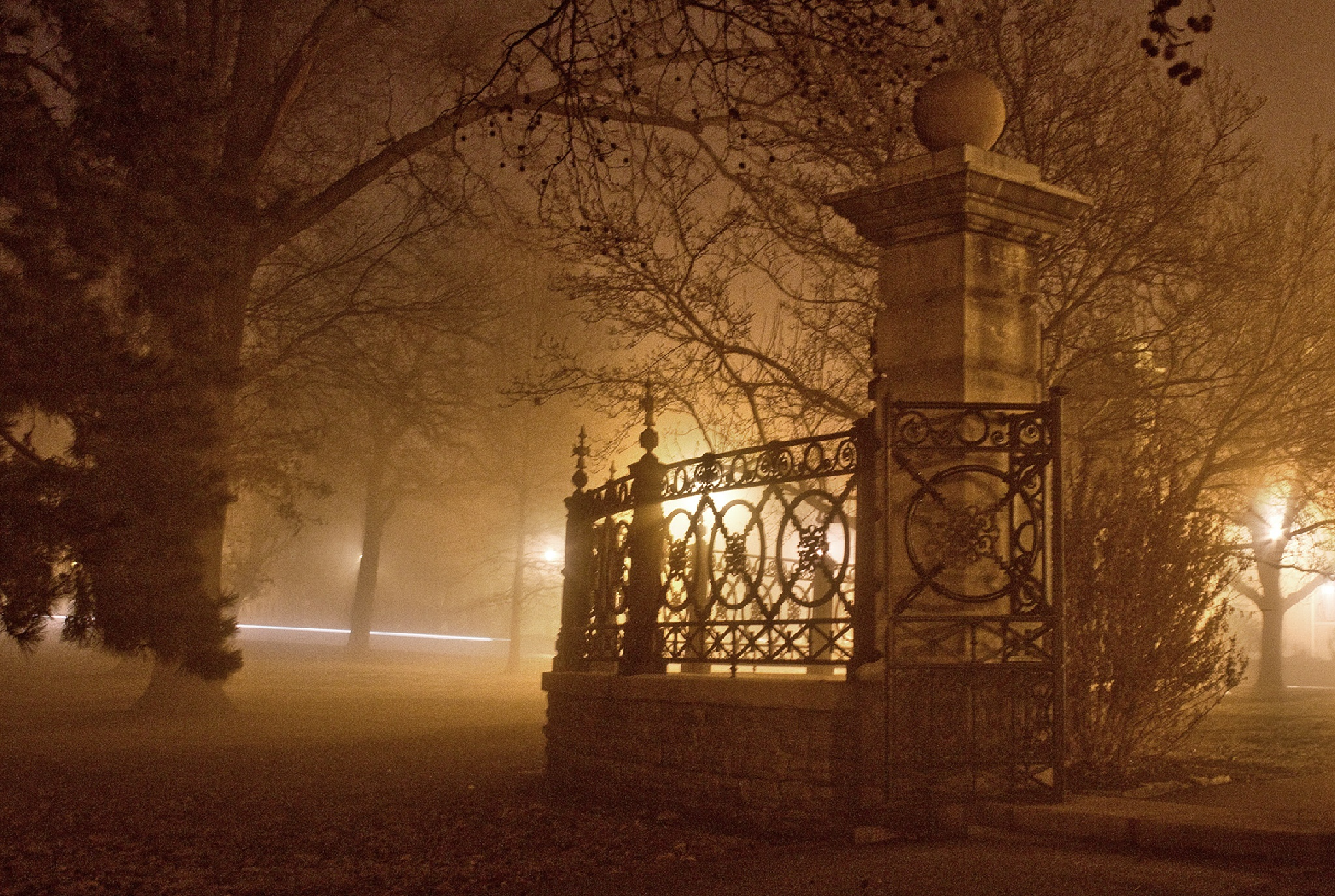 Foggy Morning in the Park by timothy.farmer.180