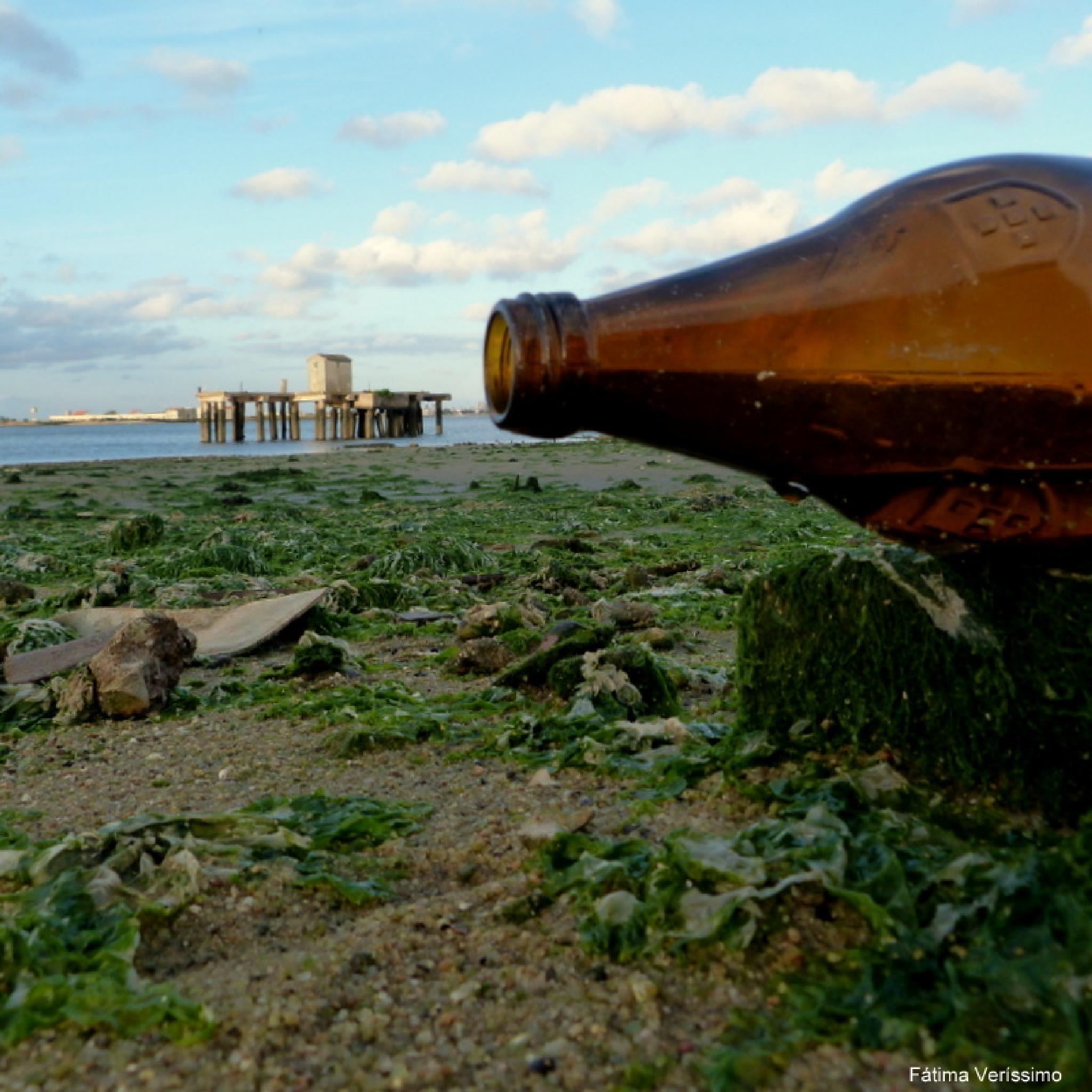 Landscape in a bottle by fatimaverissimo31