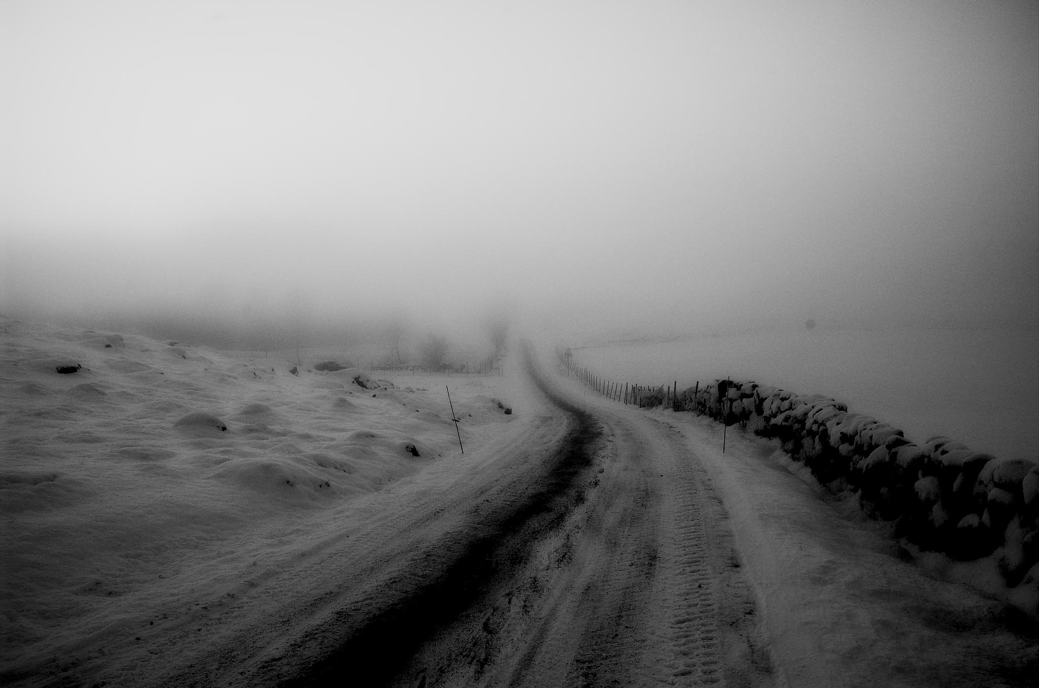 Road to nowhere. by Rebecca Tourniaire