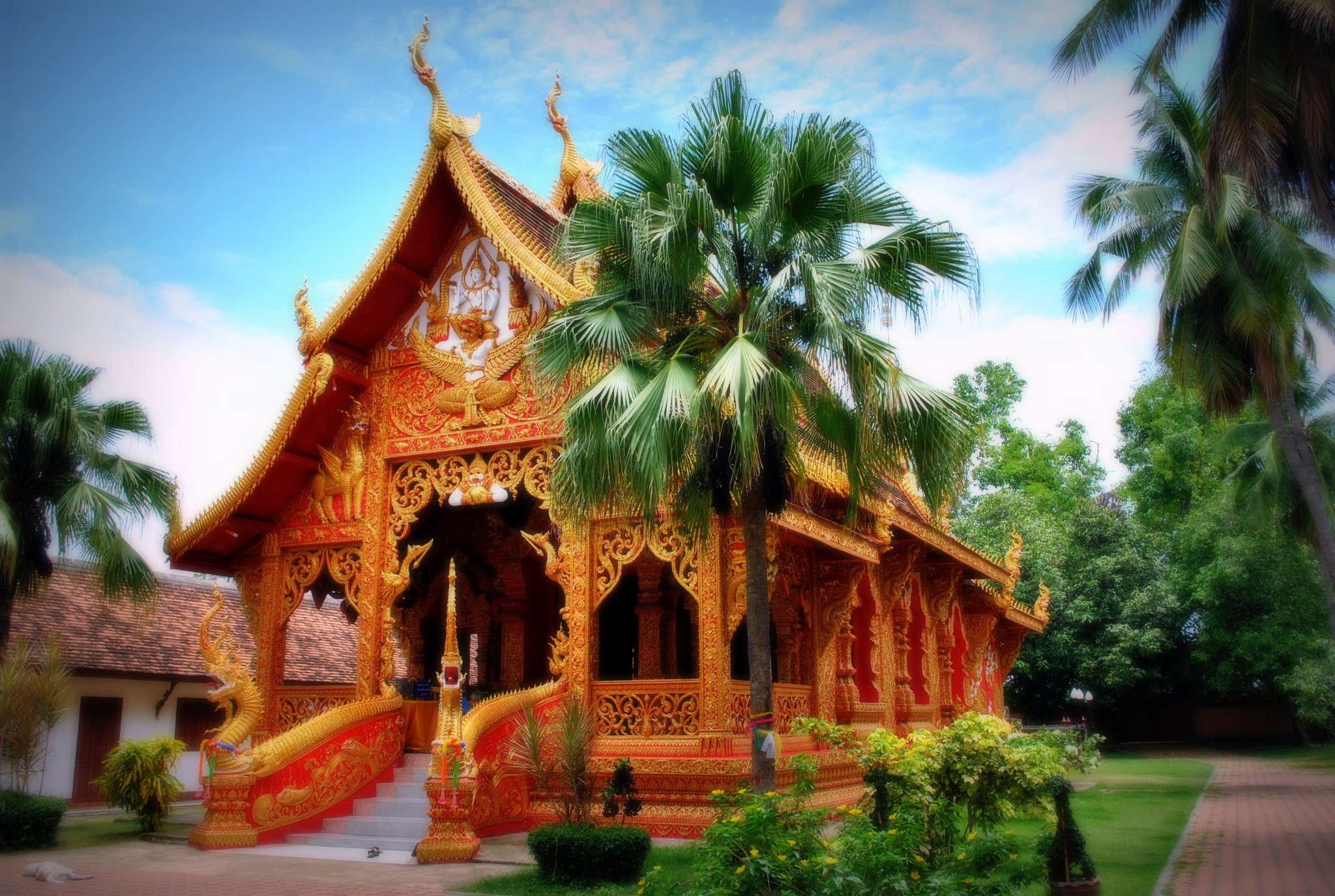 Wat Thong by Fulvio Toso