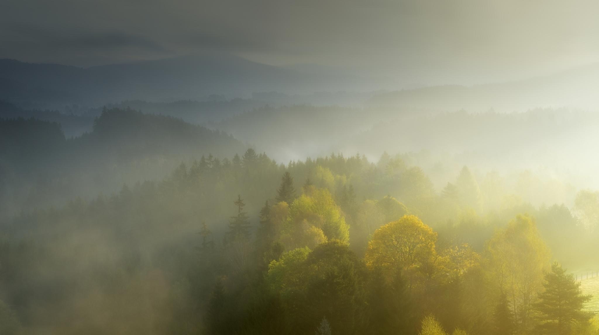 CZECH SWITZERLAND - Daybreak by Tomáš Moravec