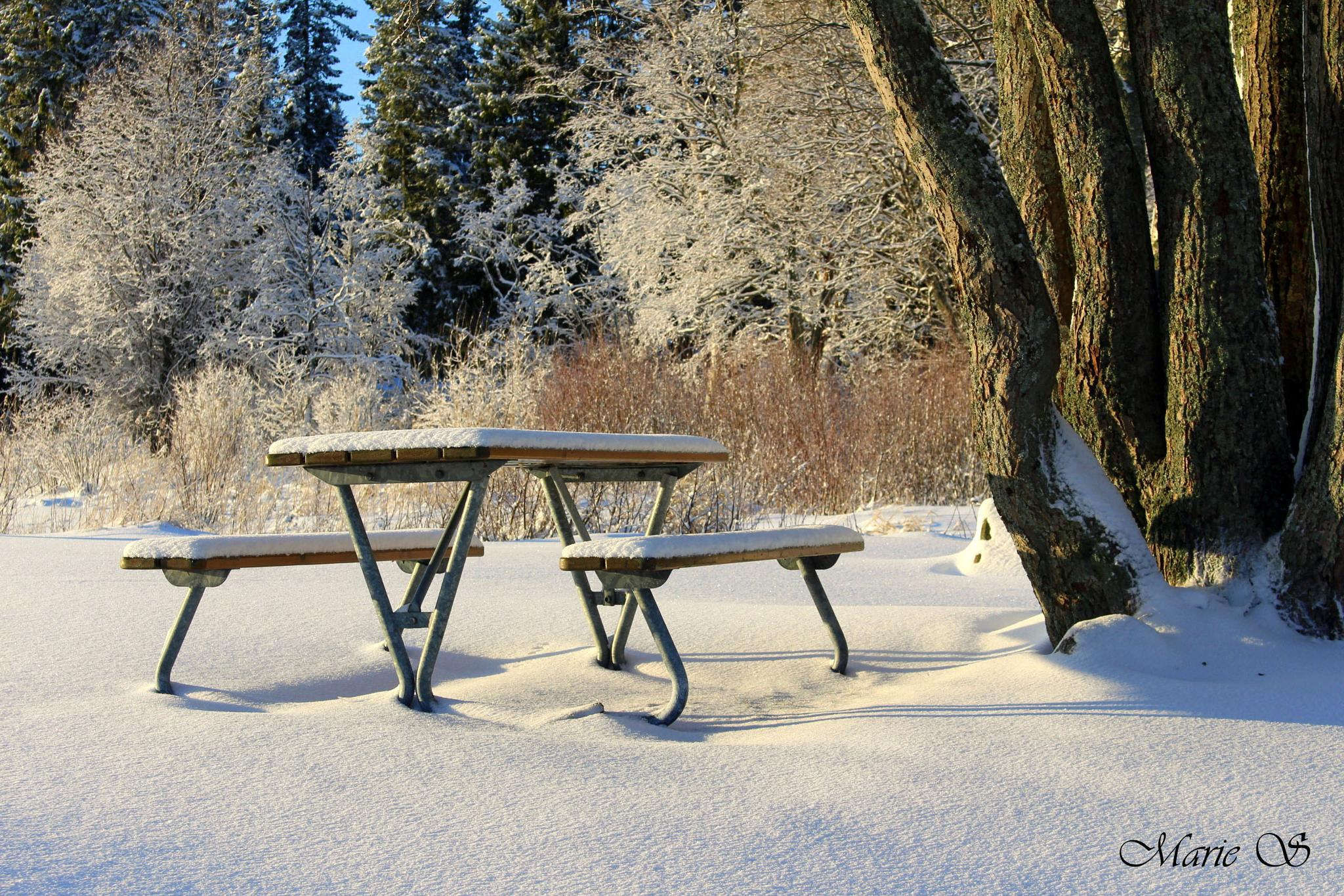 Patio Furniture with Snow by Marie Stjärnborg