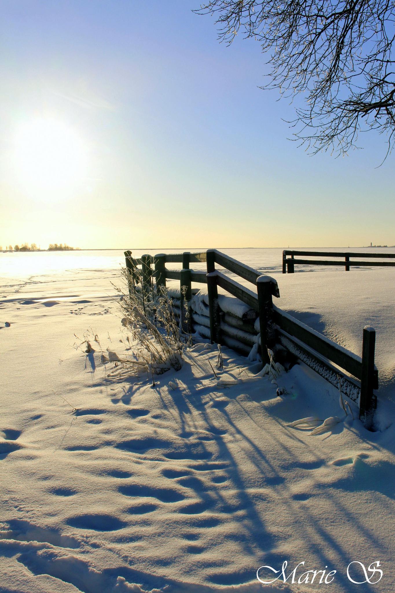 sunny winter day by Marie Stjärnborg