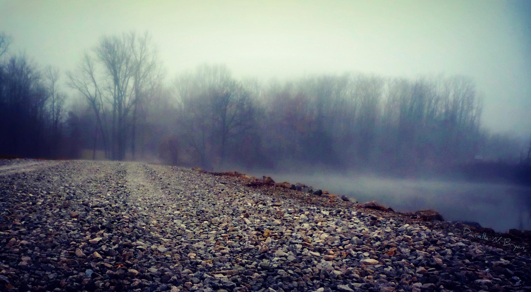 The Road Less Traveled 2 by danielle.bryan.77770