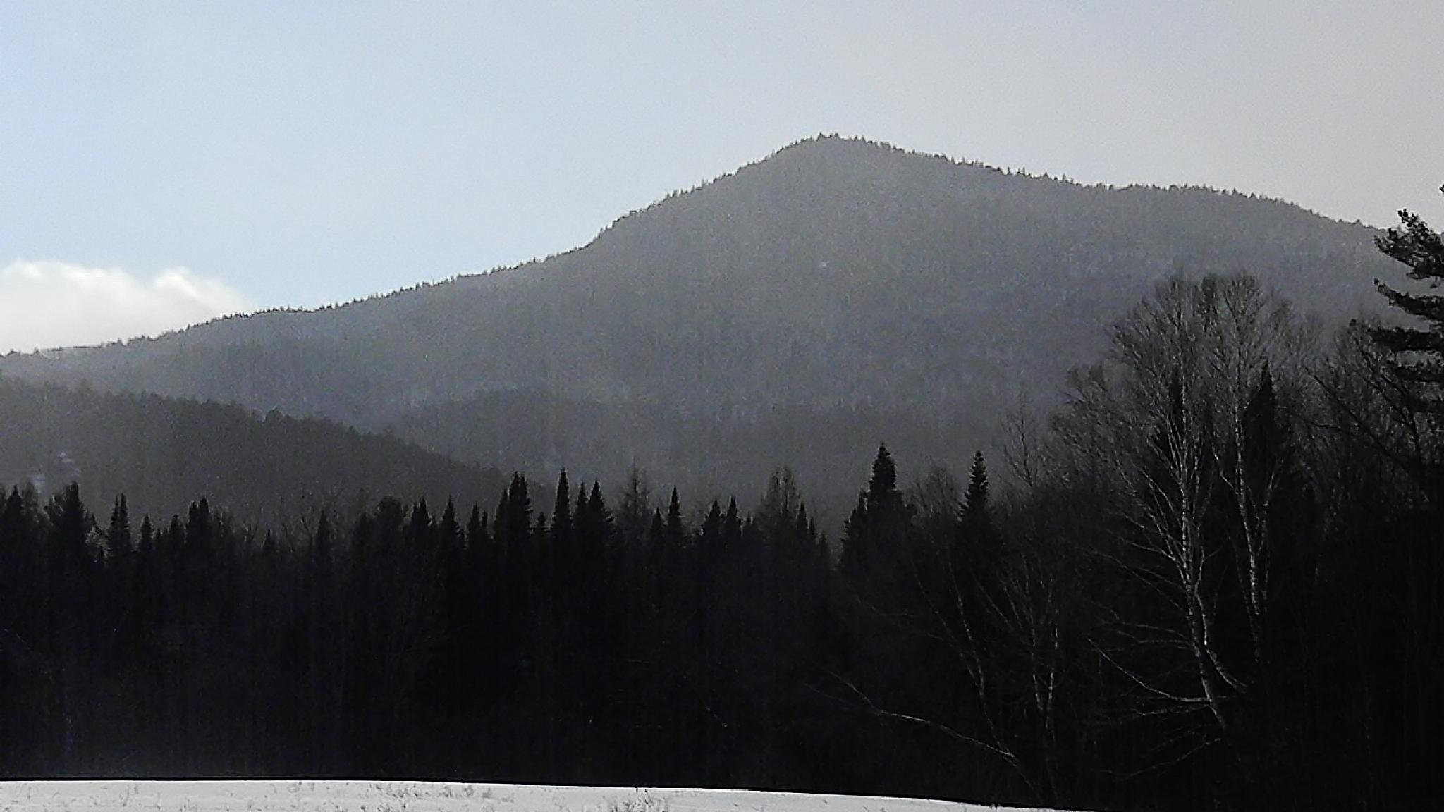 Mt. Dustan , Wentworth Location, NH by kbgarvey
