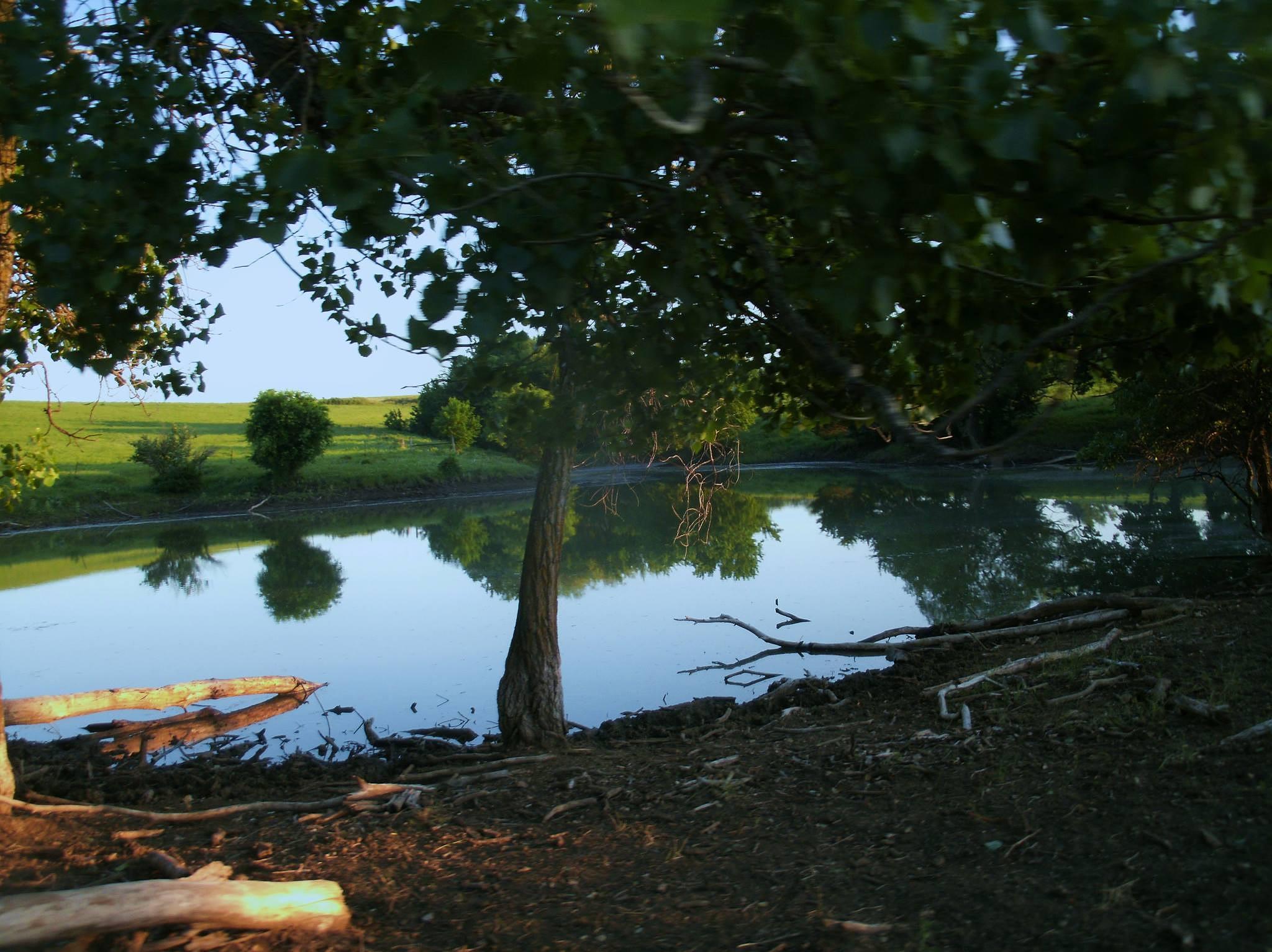 Country pond by Marsha Furman