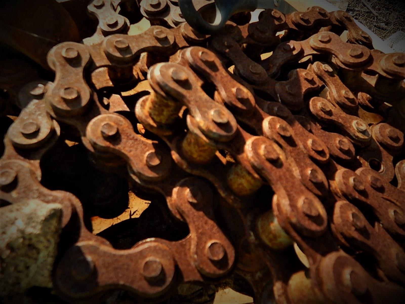Chain by Marsha Furman