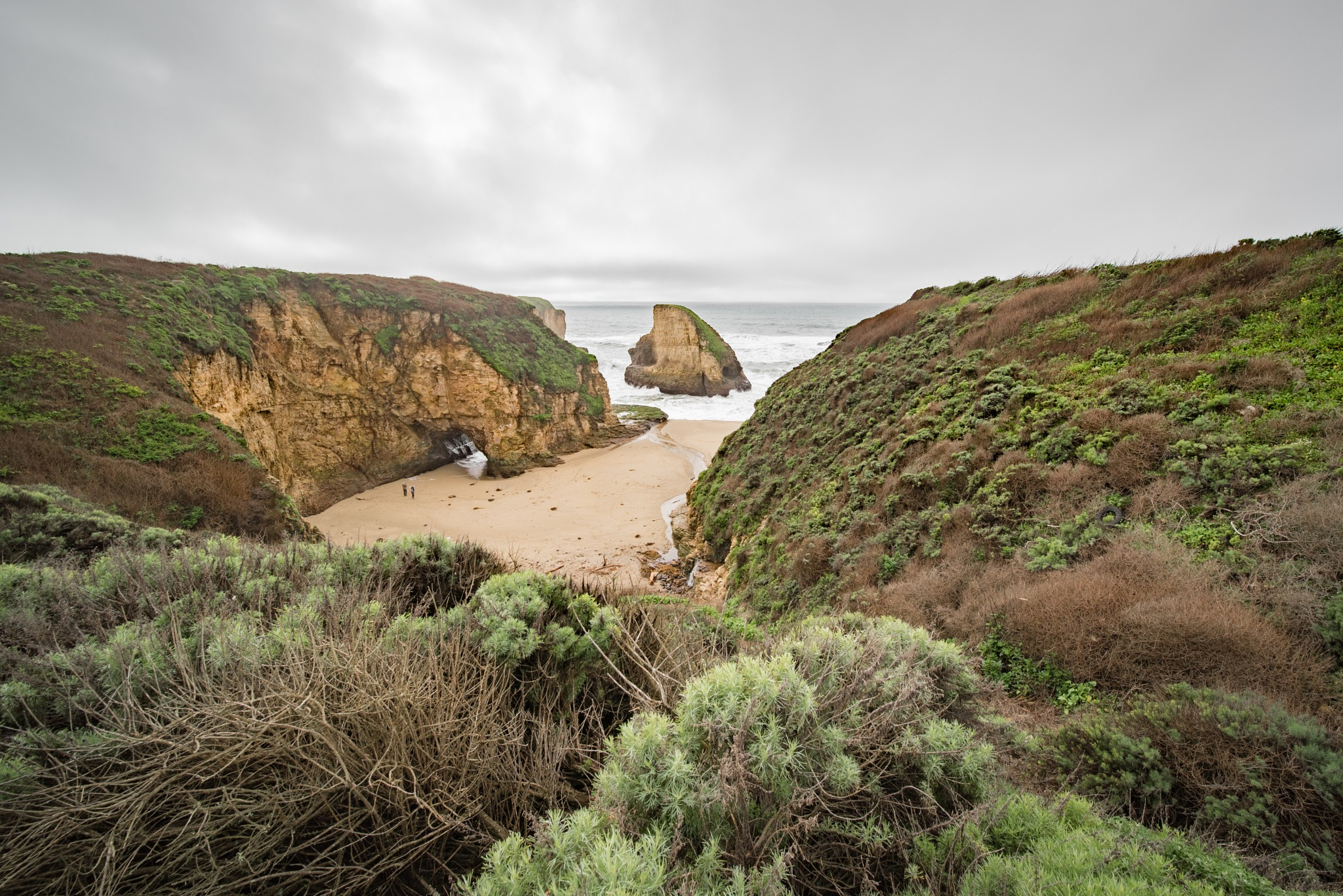 Gray Day at Shark Fin Cove by Kevin Drew Davis