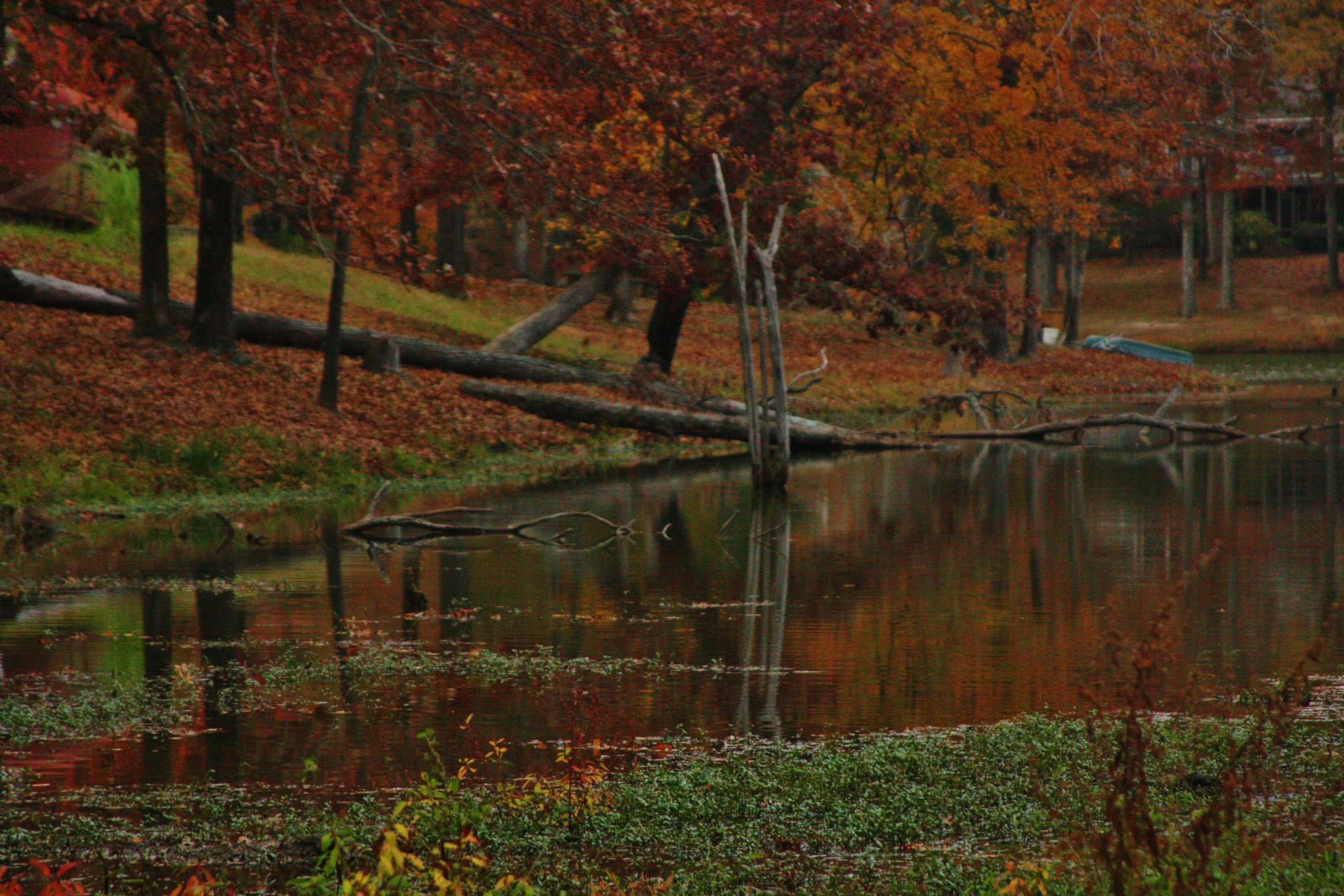 Lake by ginger.barritt