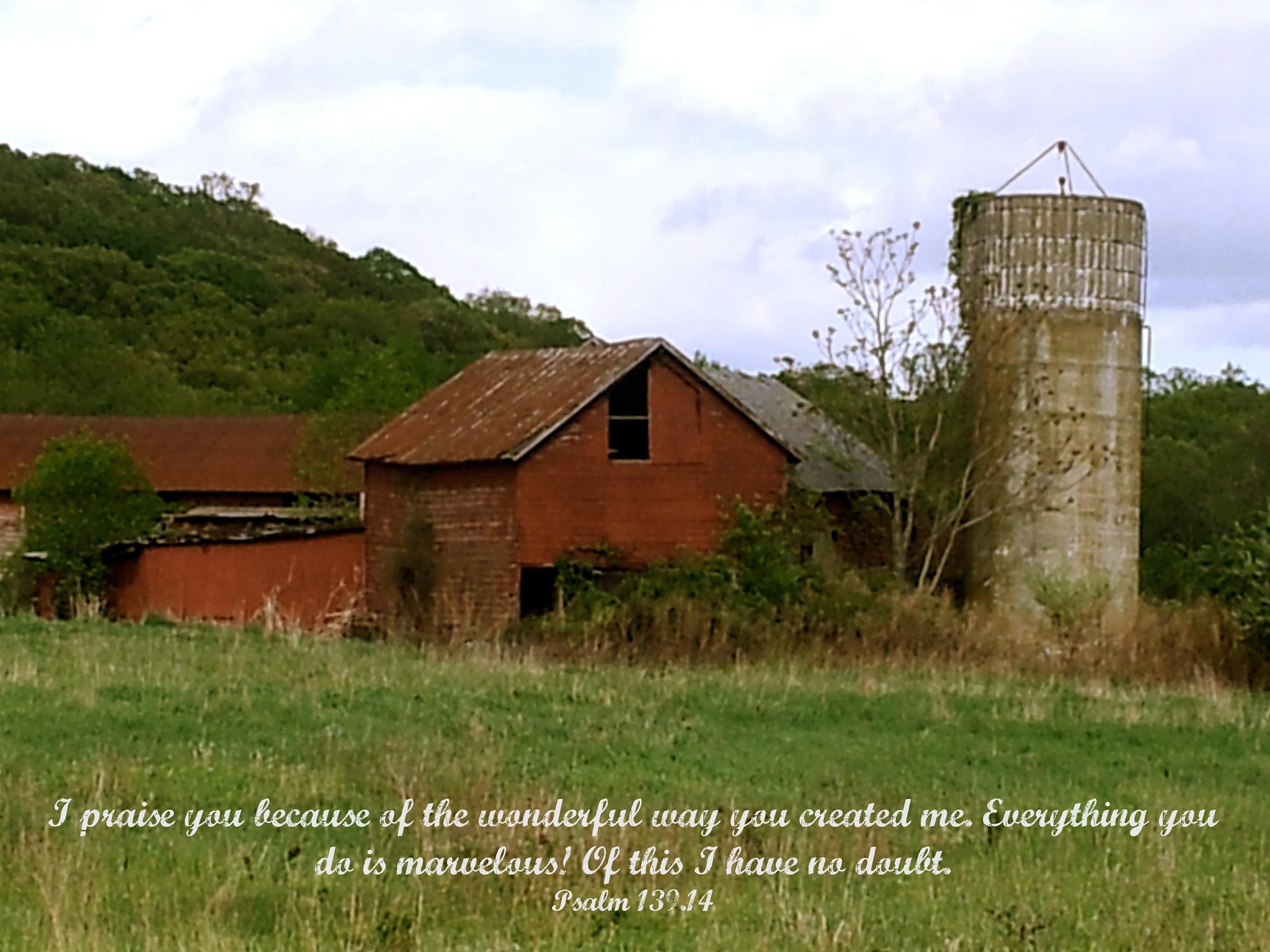 Psalm 139:14 by photoroe