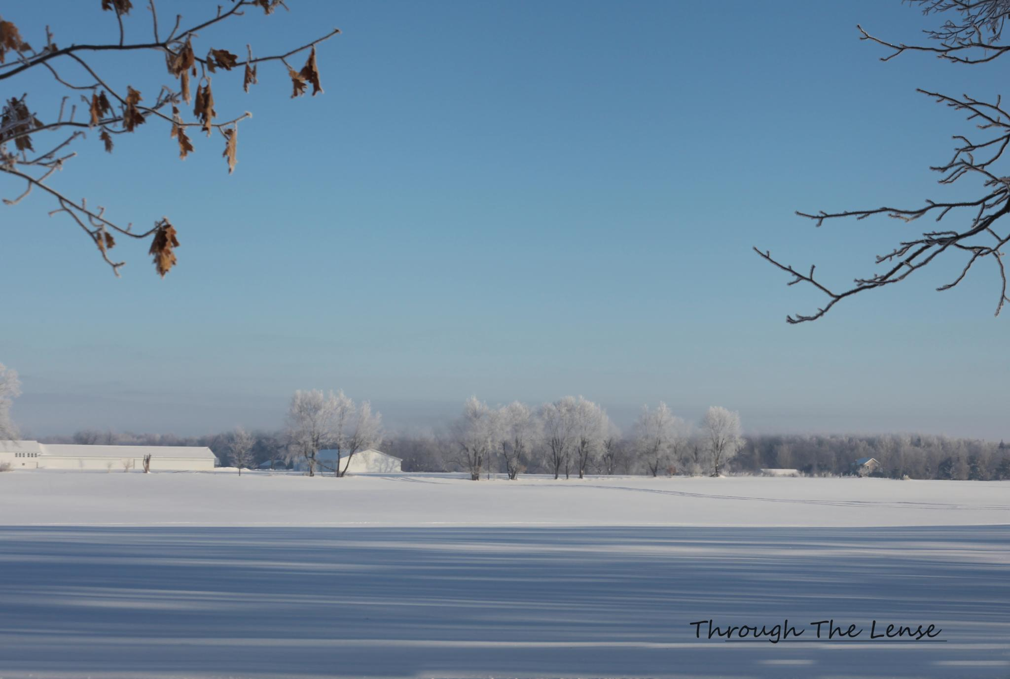 Winter Landscape by Throughthelense