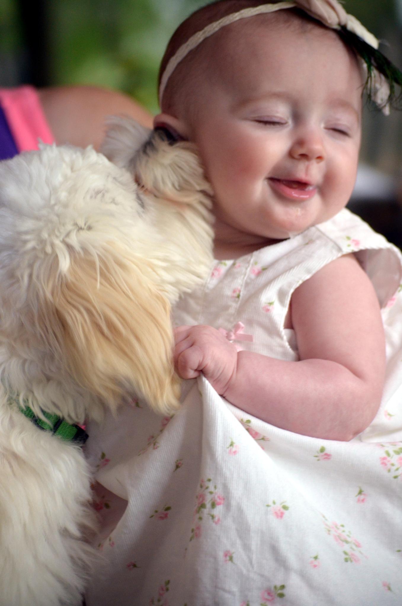 Puppy Kisses by cathy.paulet.zakrzewski