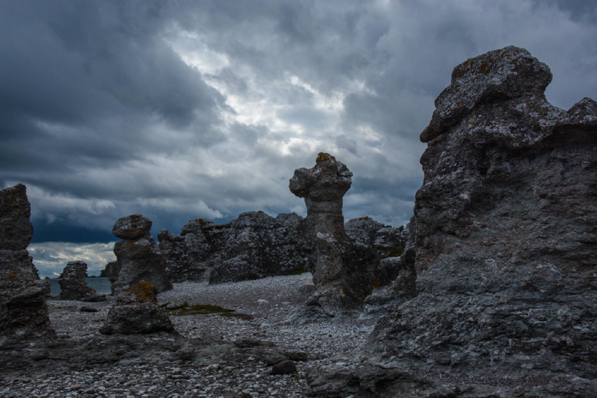 Folshammars raukar,Gotland by Lars Delling