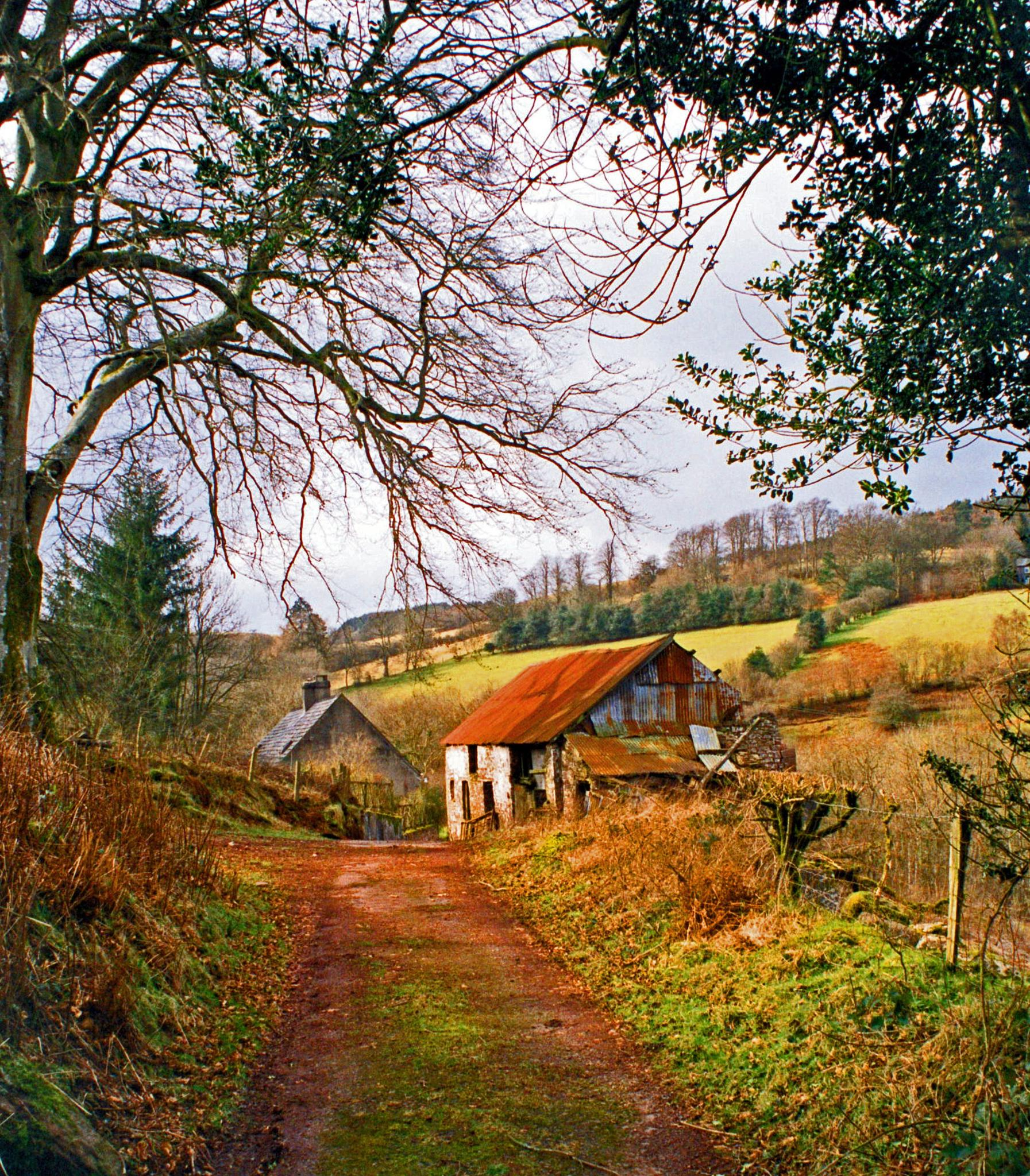 Abandoned hill farm. by davidgm