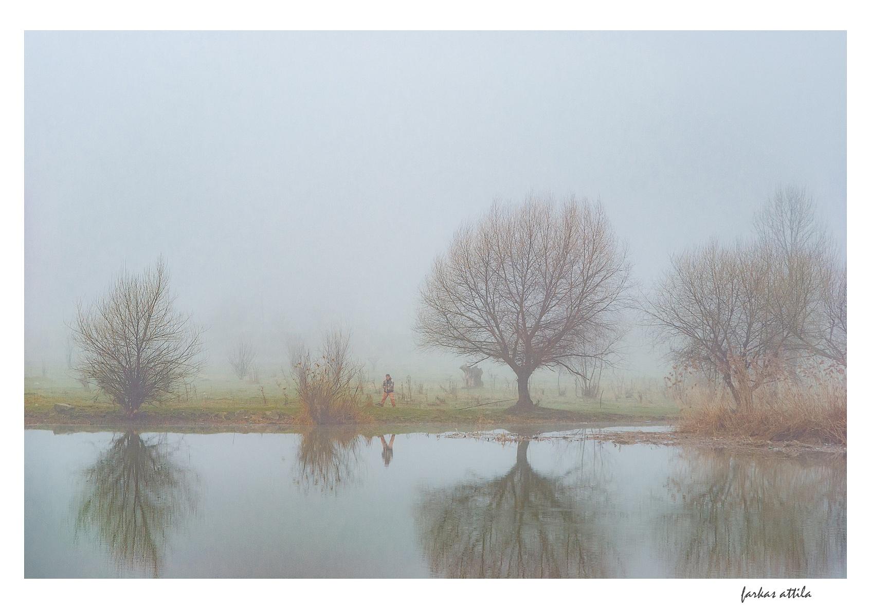 The estuary... by Attila Farkas