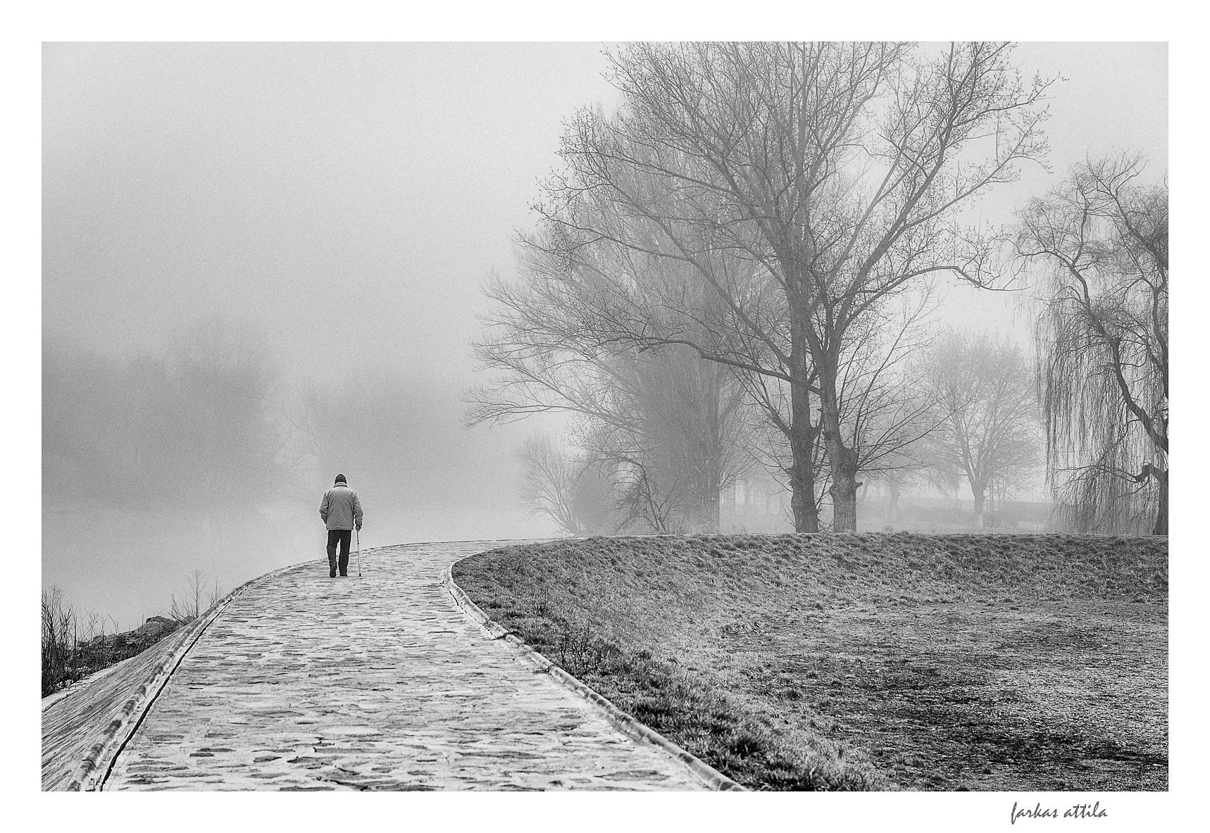 The walk... by Attila Farkas