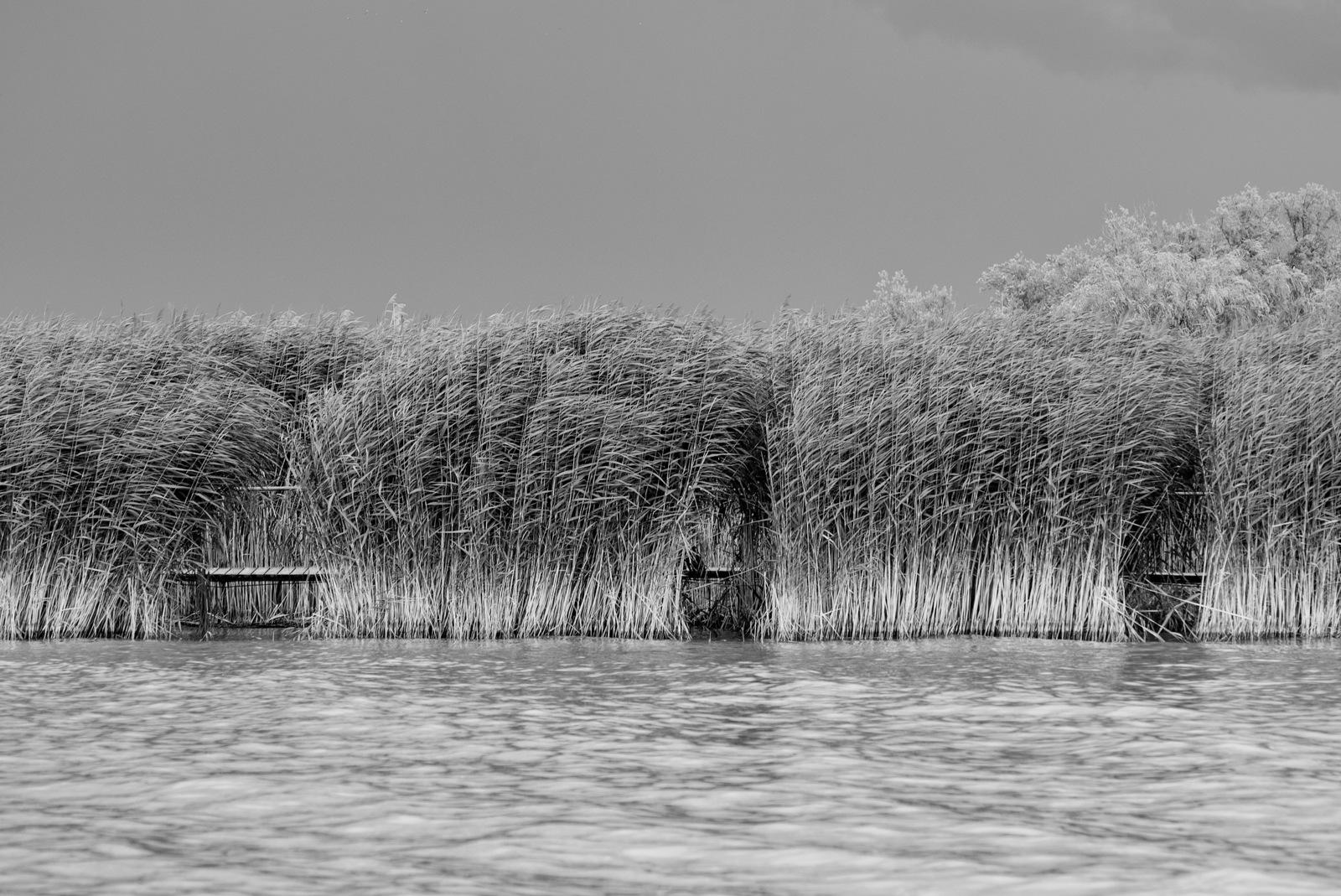 Layers... by Attila Farkas