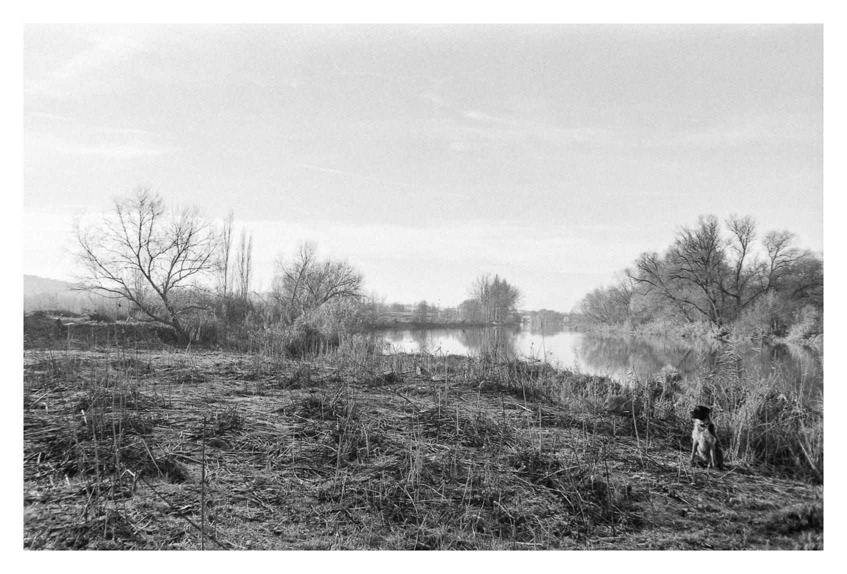 At the river... by Attila Farkas