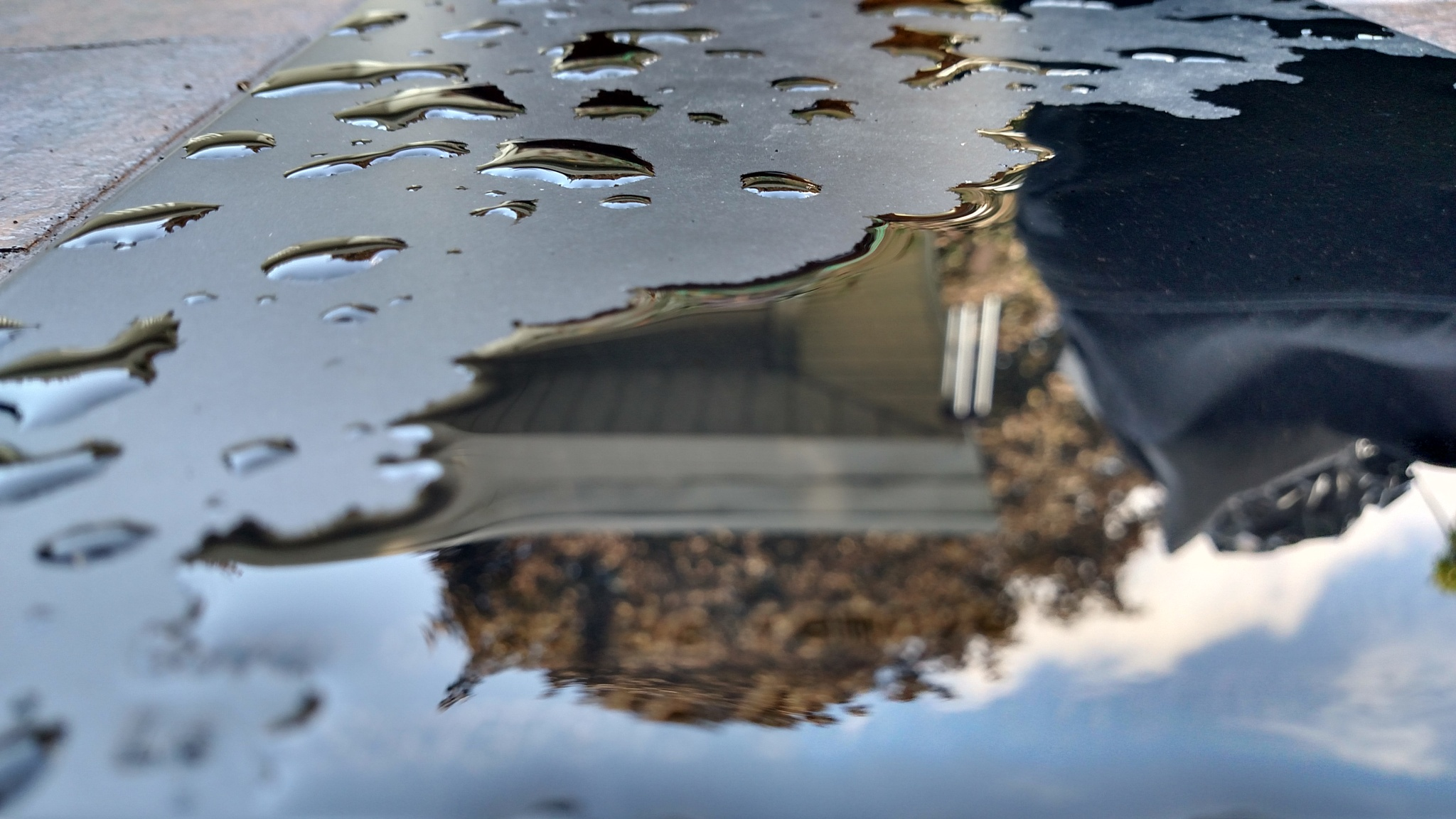 Reflections by whitehawk43