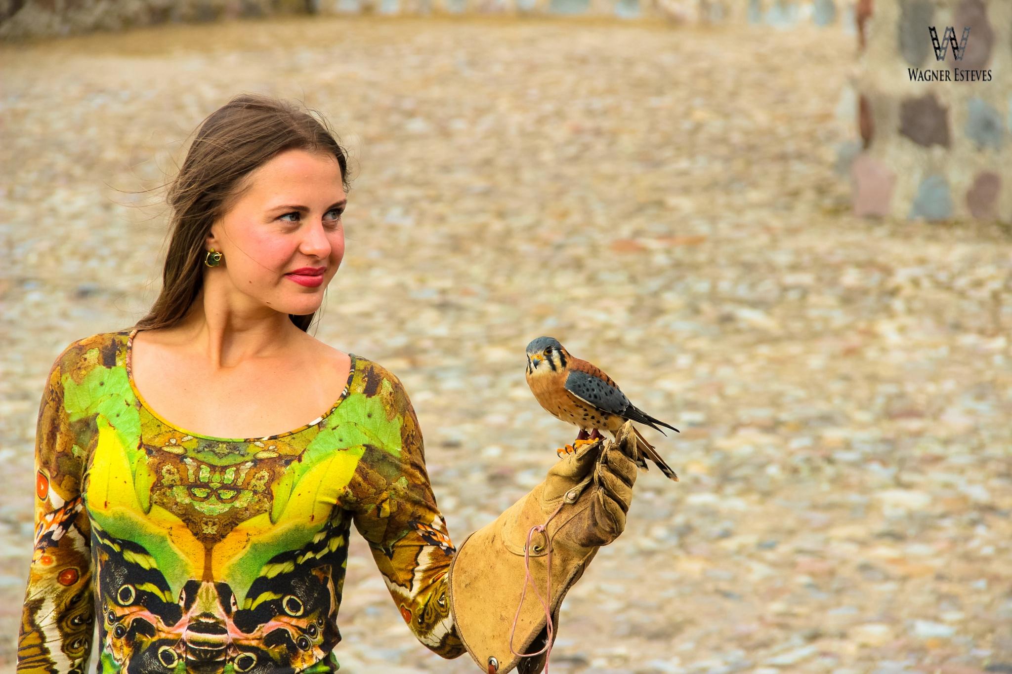 Aves de Rapina by Wagner Esteves