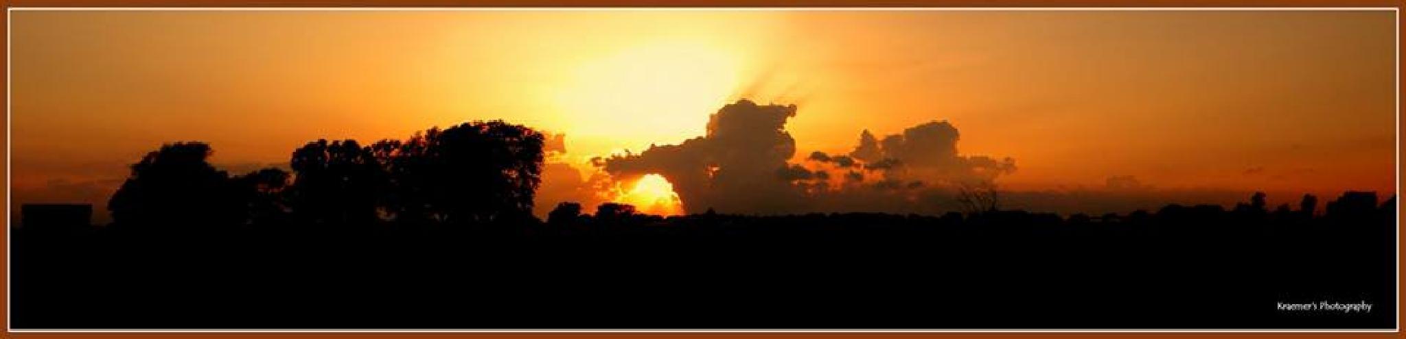 Panel sunset by Trish Kraemer