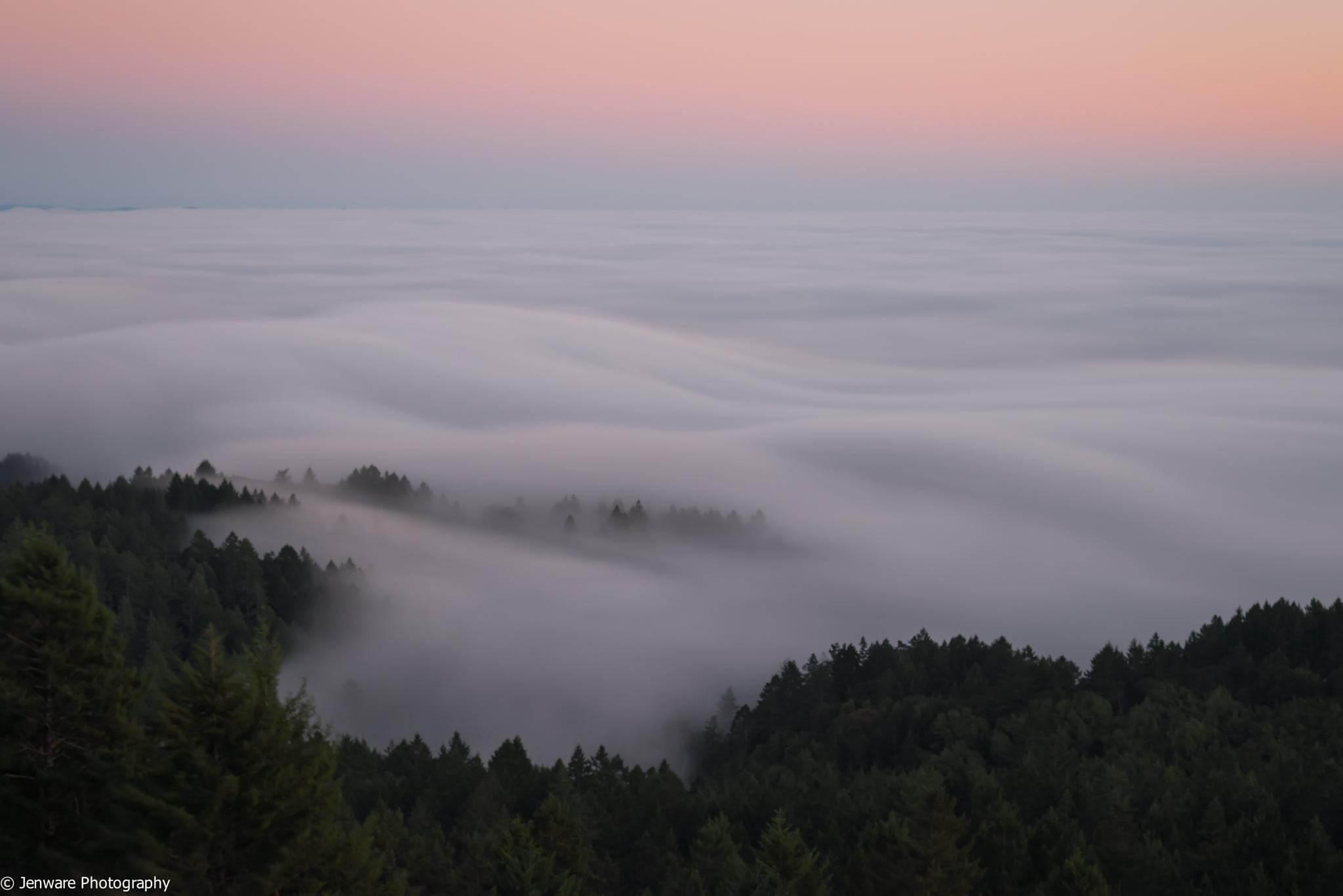 Rolling Fog by Jenware Photography