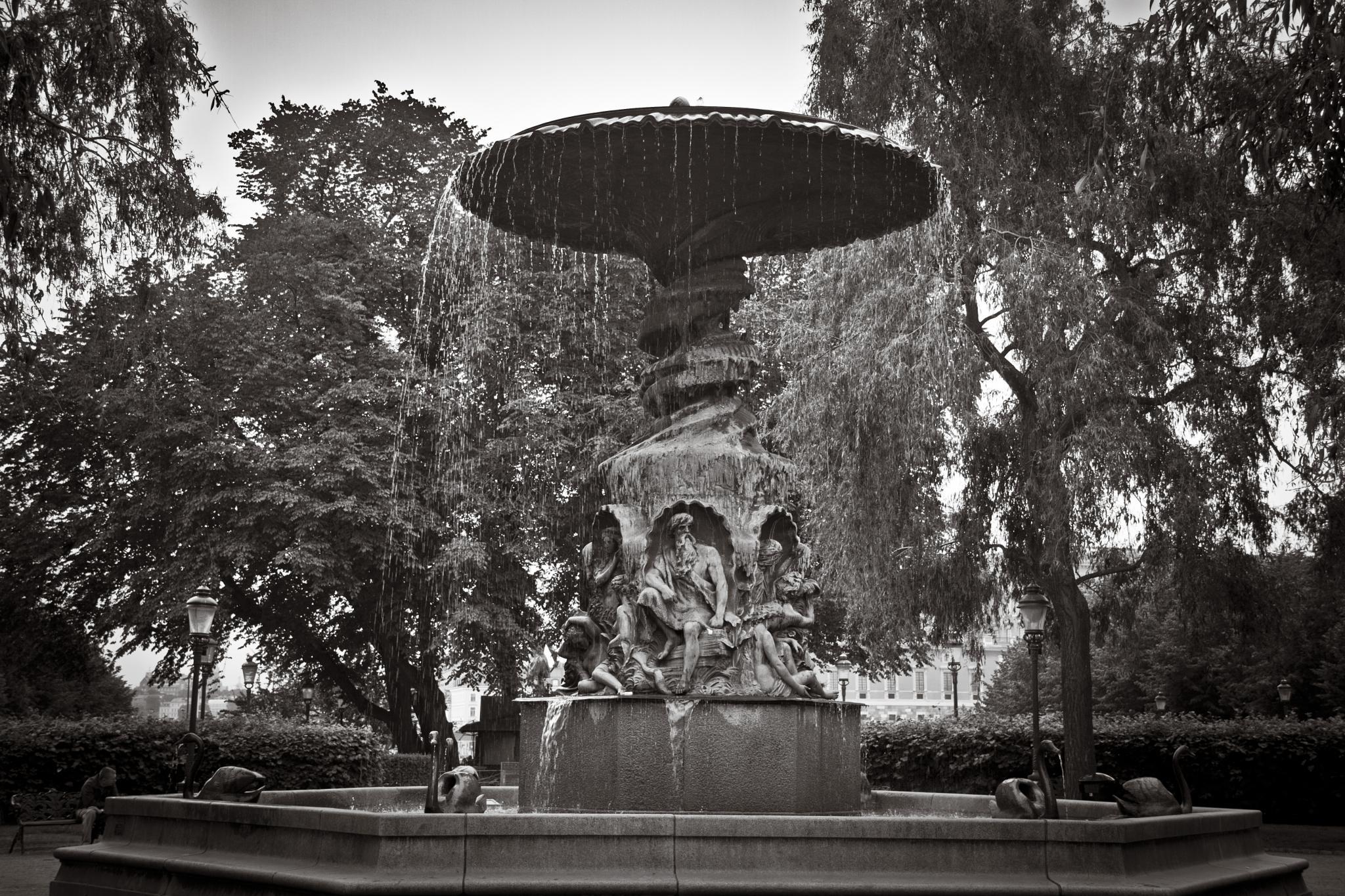 Fountain 2 by Adam Januszewski
