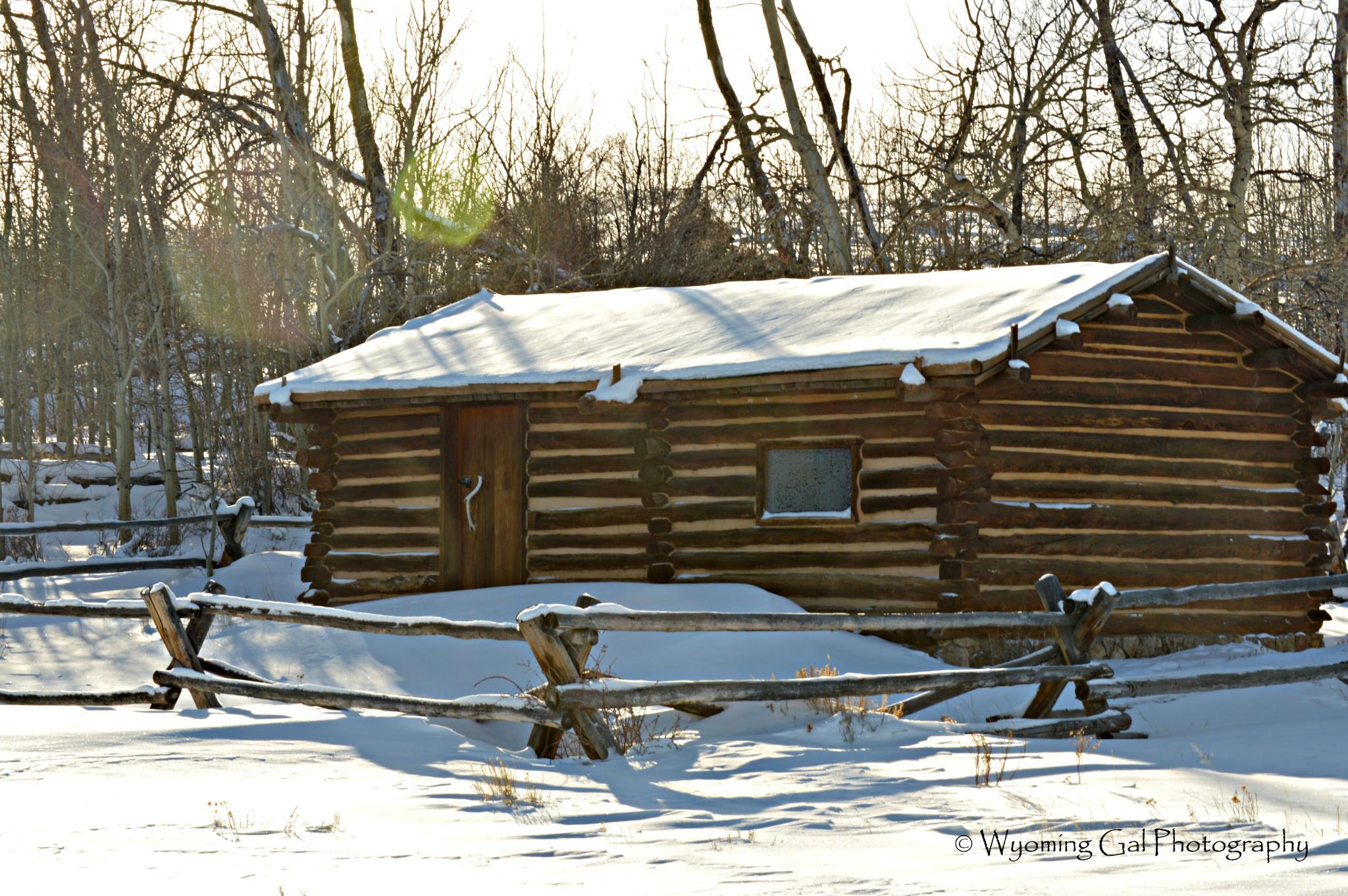 Winter Lodging by brenda.beatty